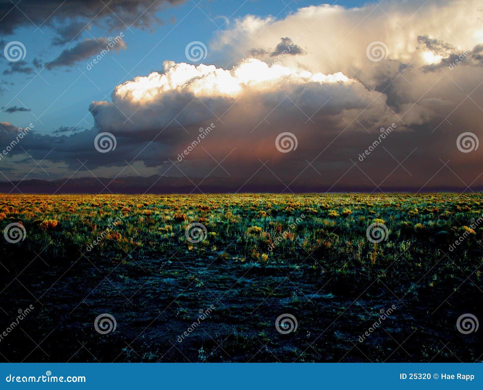 Download El campo foto de archivo. Imagen de desierto, paisajes, nube - 25320