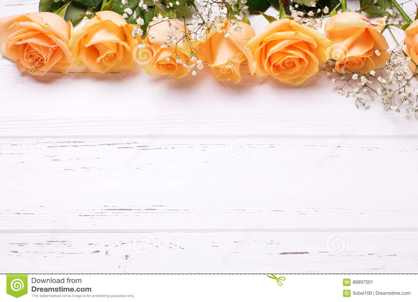 El capítulo o la frontera de rosas del color del melocotón florece en de madera blanco