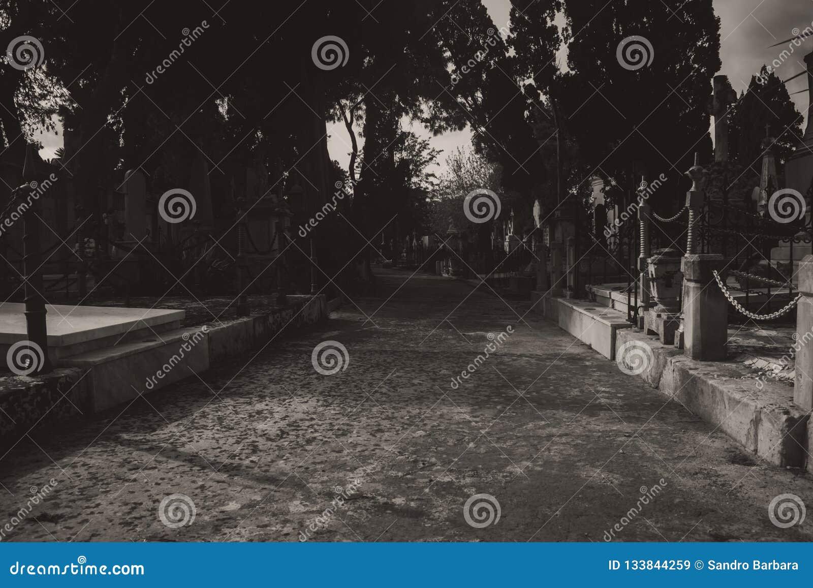 El cementerio en blanco y negro