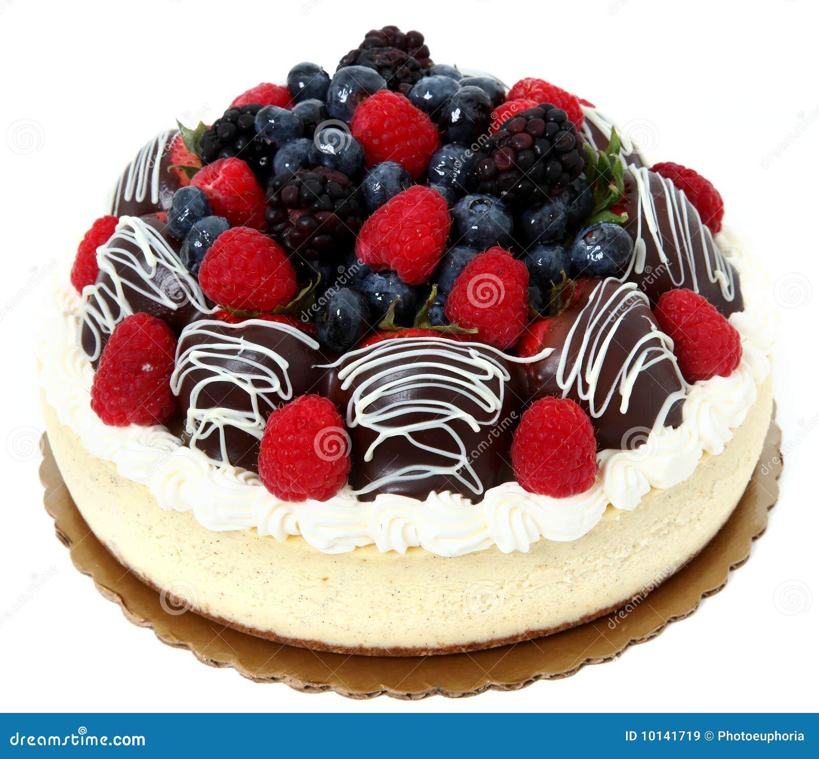 El chocolate cubrió el pastel de queso de la fresa y de la fruta
