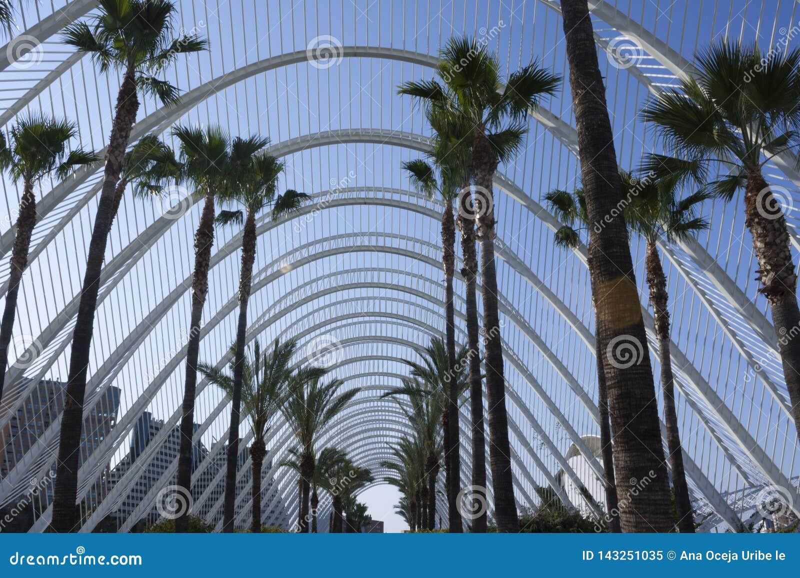 El cielo con el Umbracle en Valencia