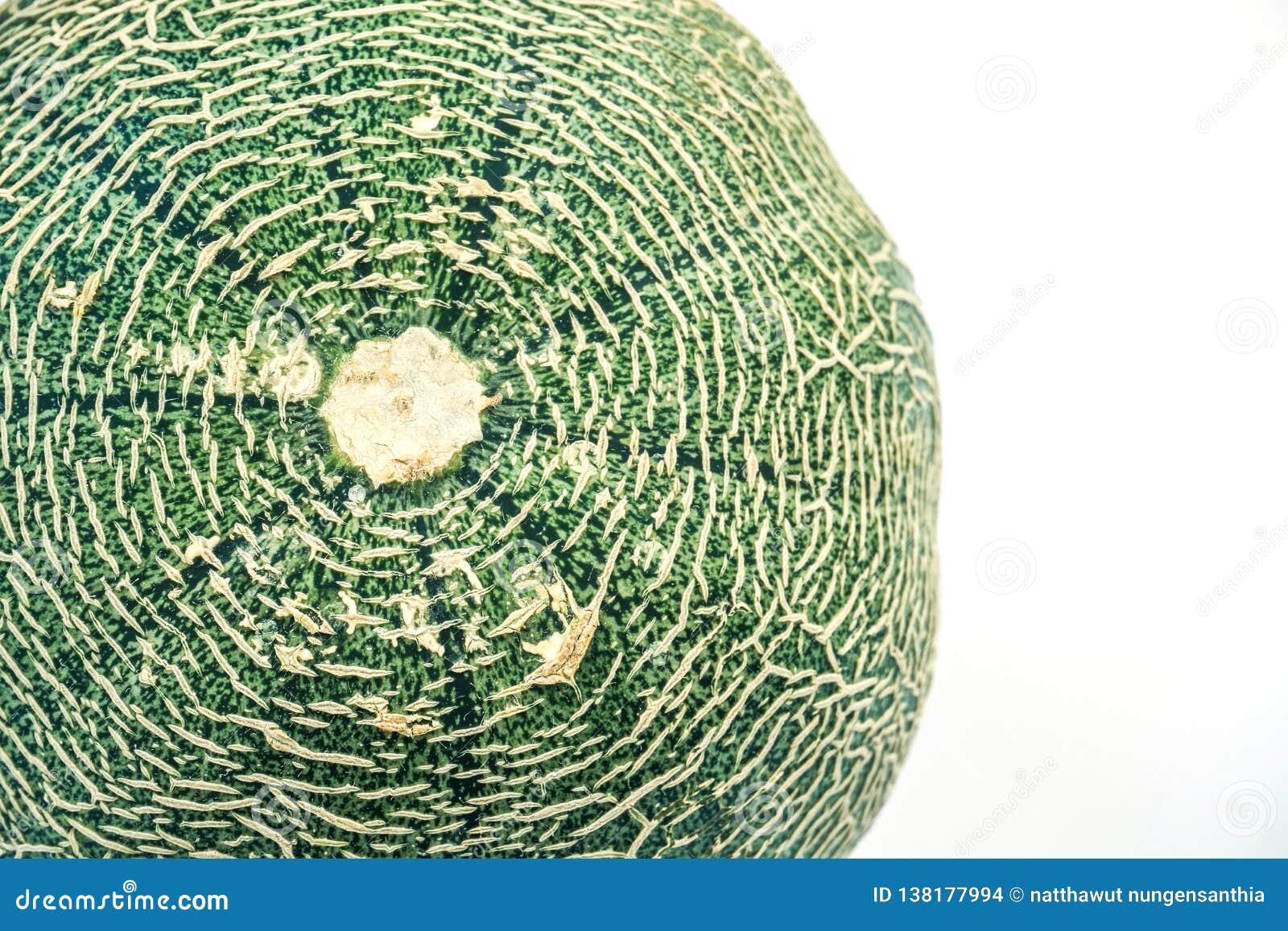 El cierre abstracto para arriba de la textura del melón del cantalupo, se cierra encima del cantalupo dulce fresco del melón de l