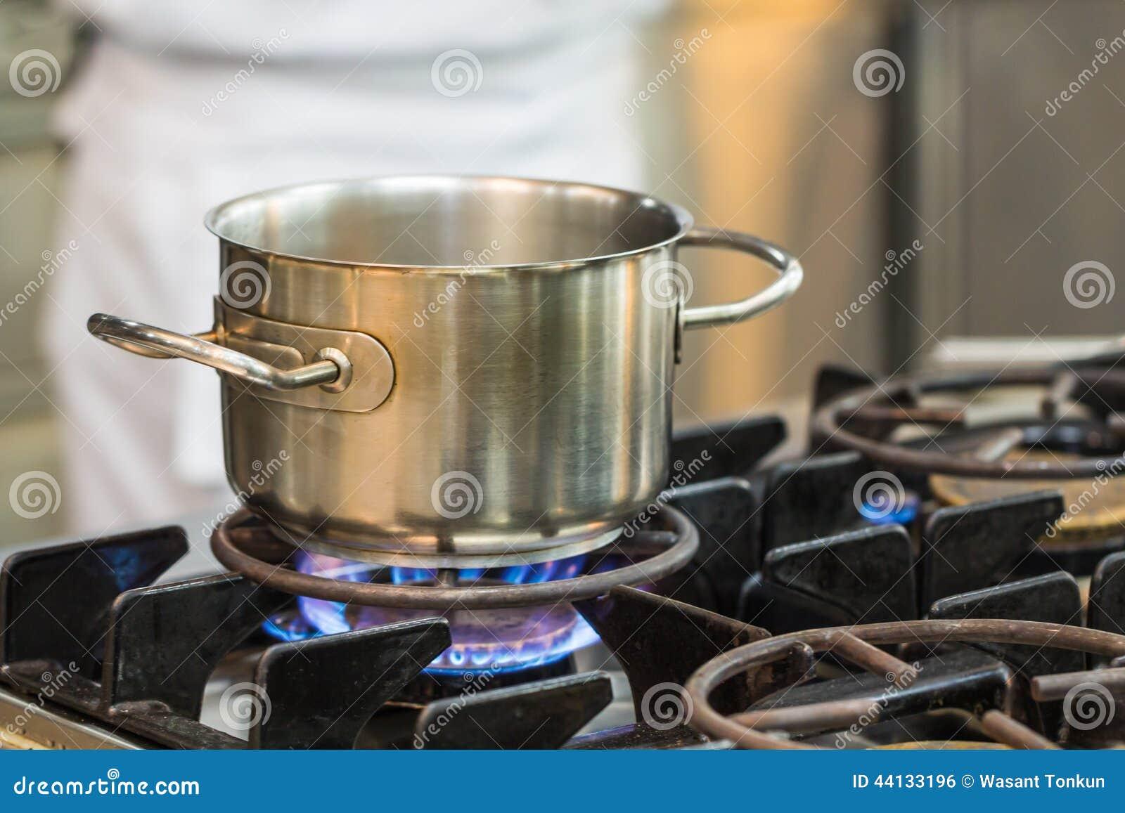 El cocinar inoxidable del pote