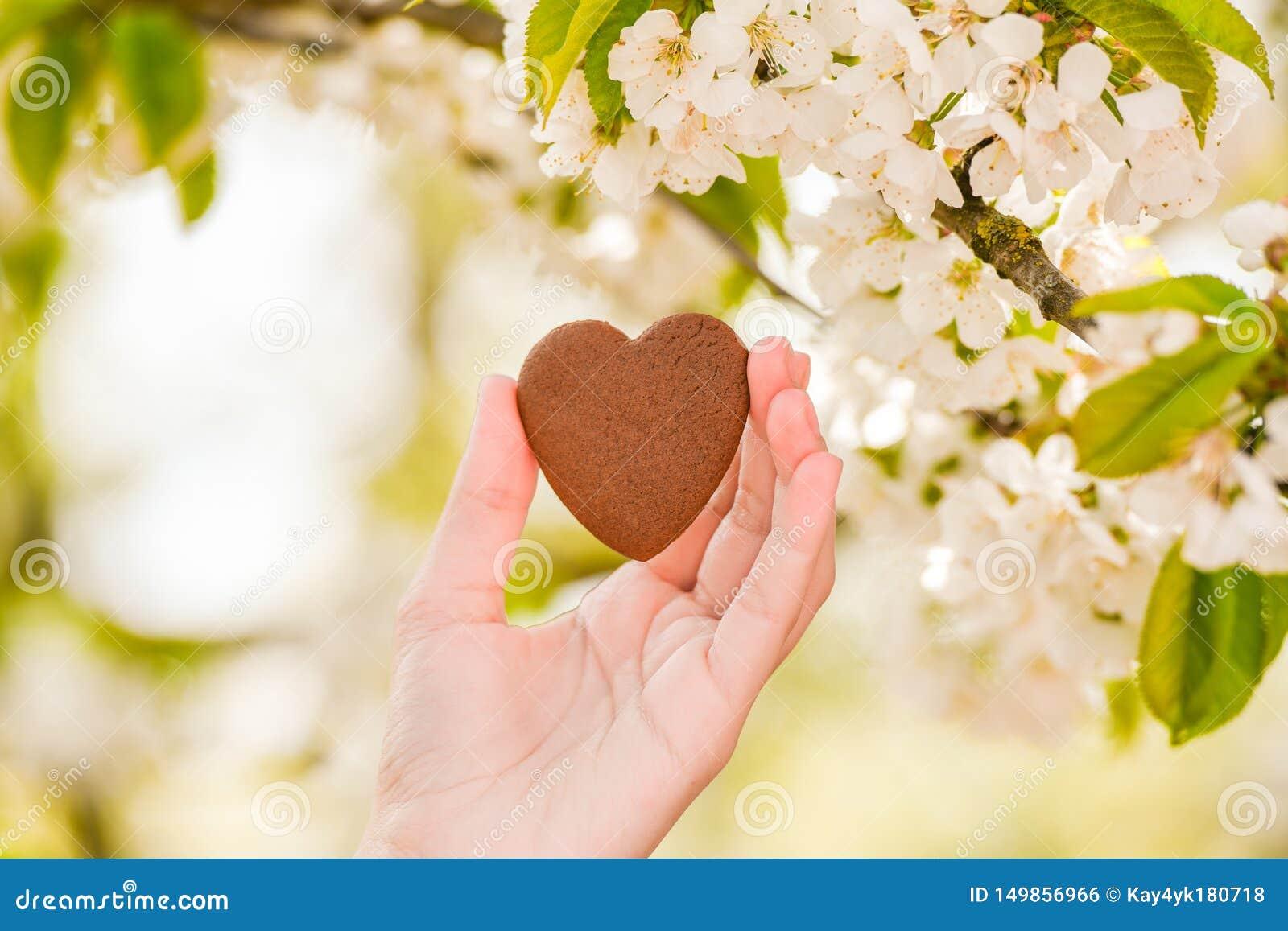 El concepto de amor para la naturaleza Floraci?n del verano Tome el cuidado de la naturaleza