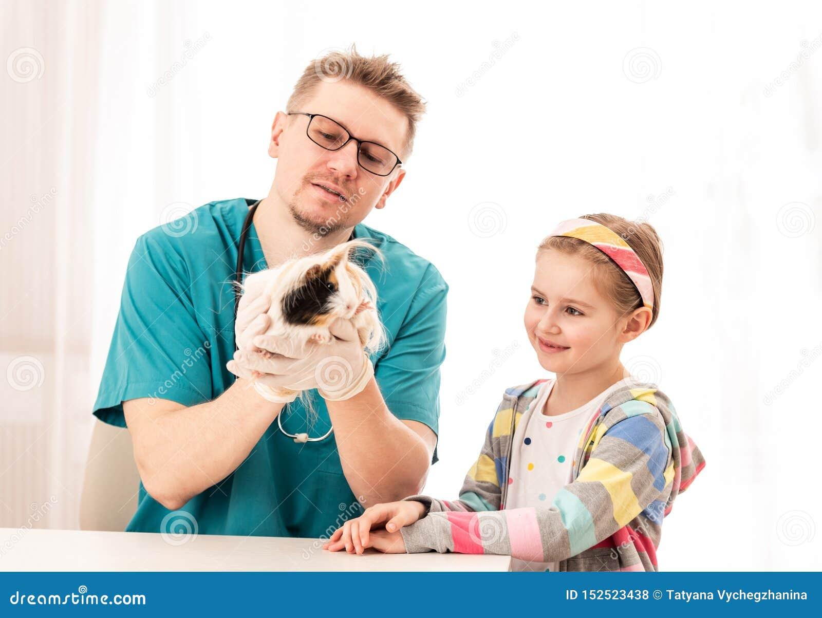 El conejillo de Indias era broght al veterinario