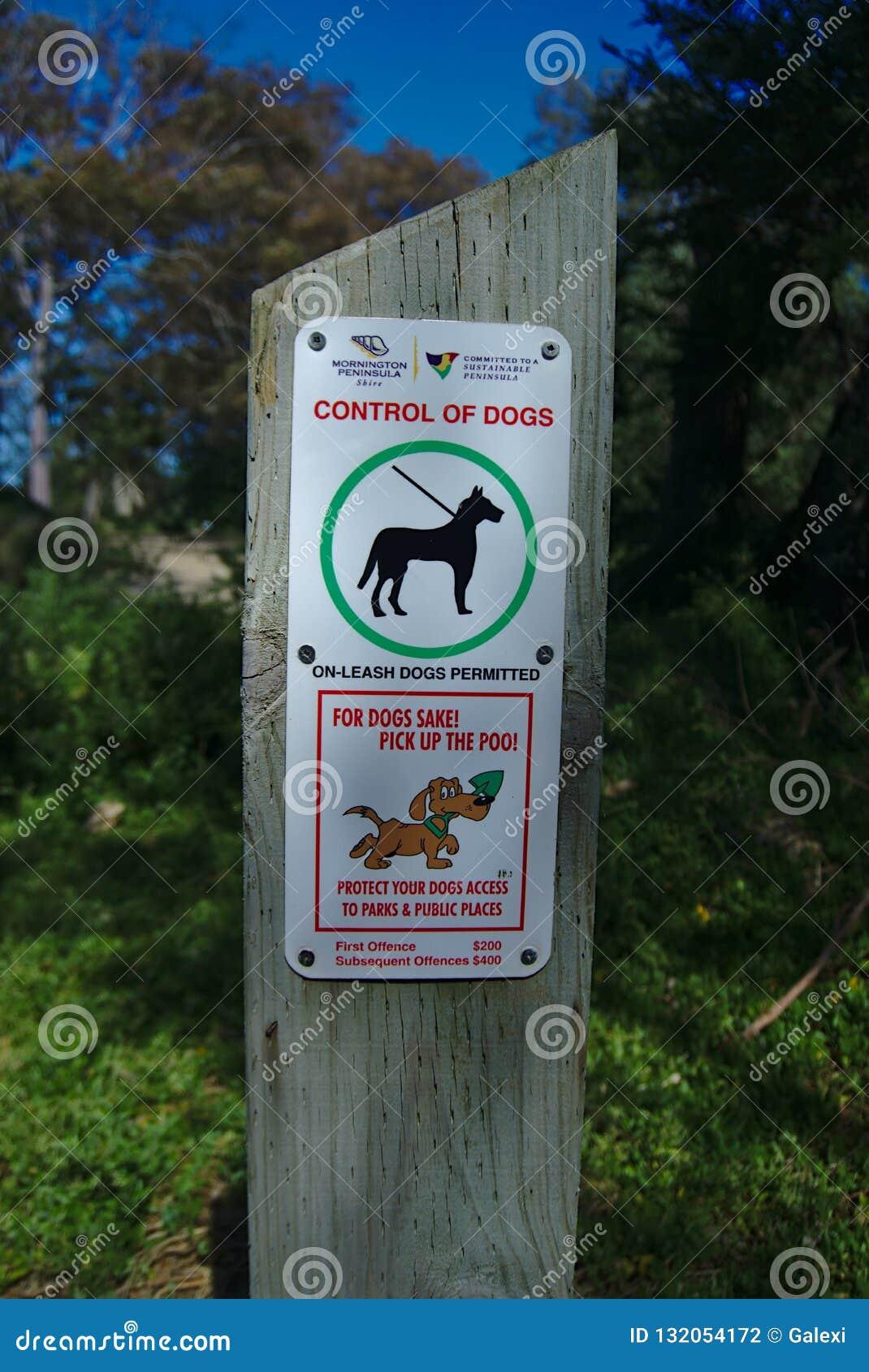El control de perros firma en el parque