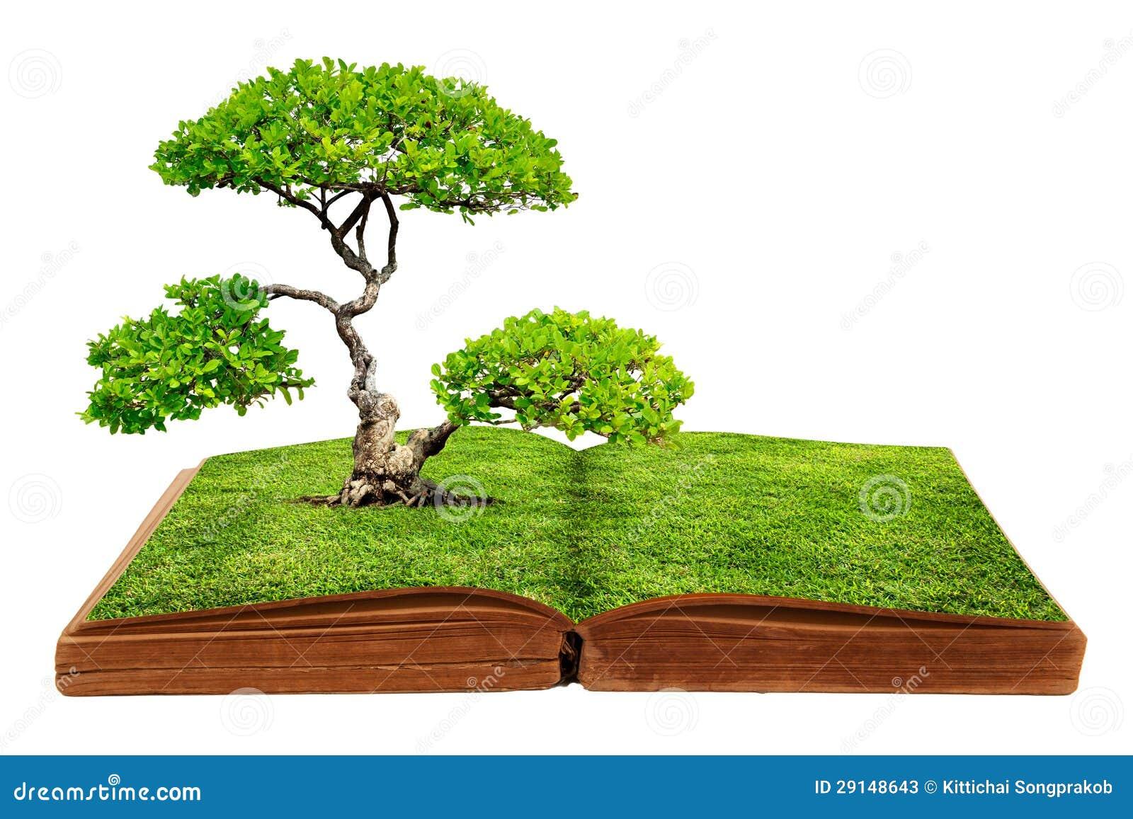 el crecimiento grande del rbol de un libro fotos de