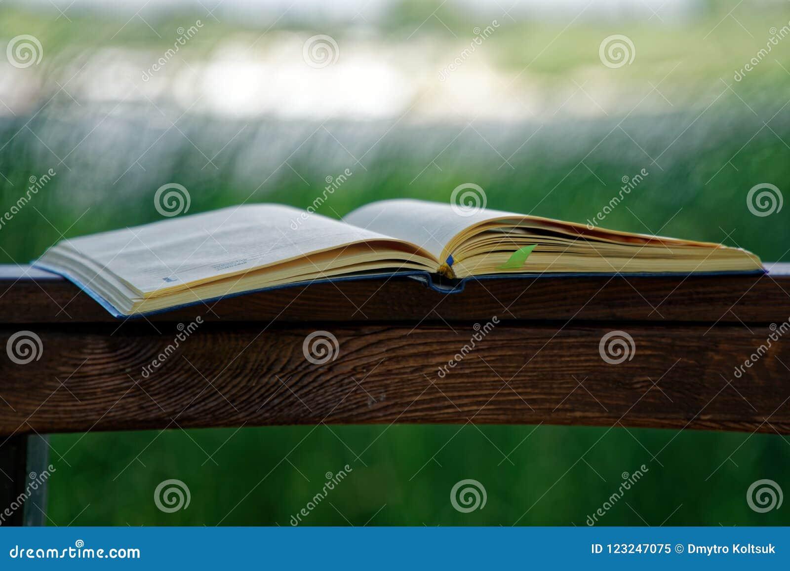 El cuaderno abierto miente en la barandilla de madera en el parque, concepto del negocio