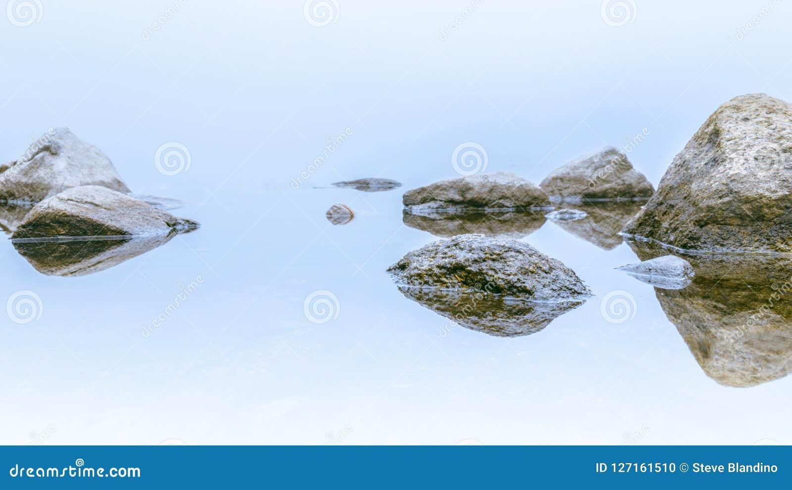El día brumoso blanco oscila la reflexión