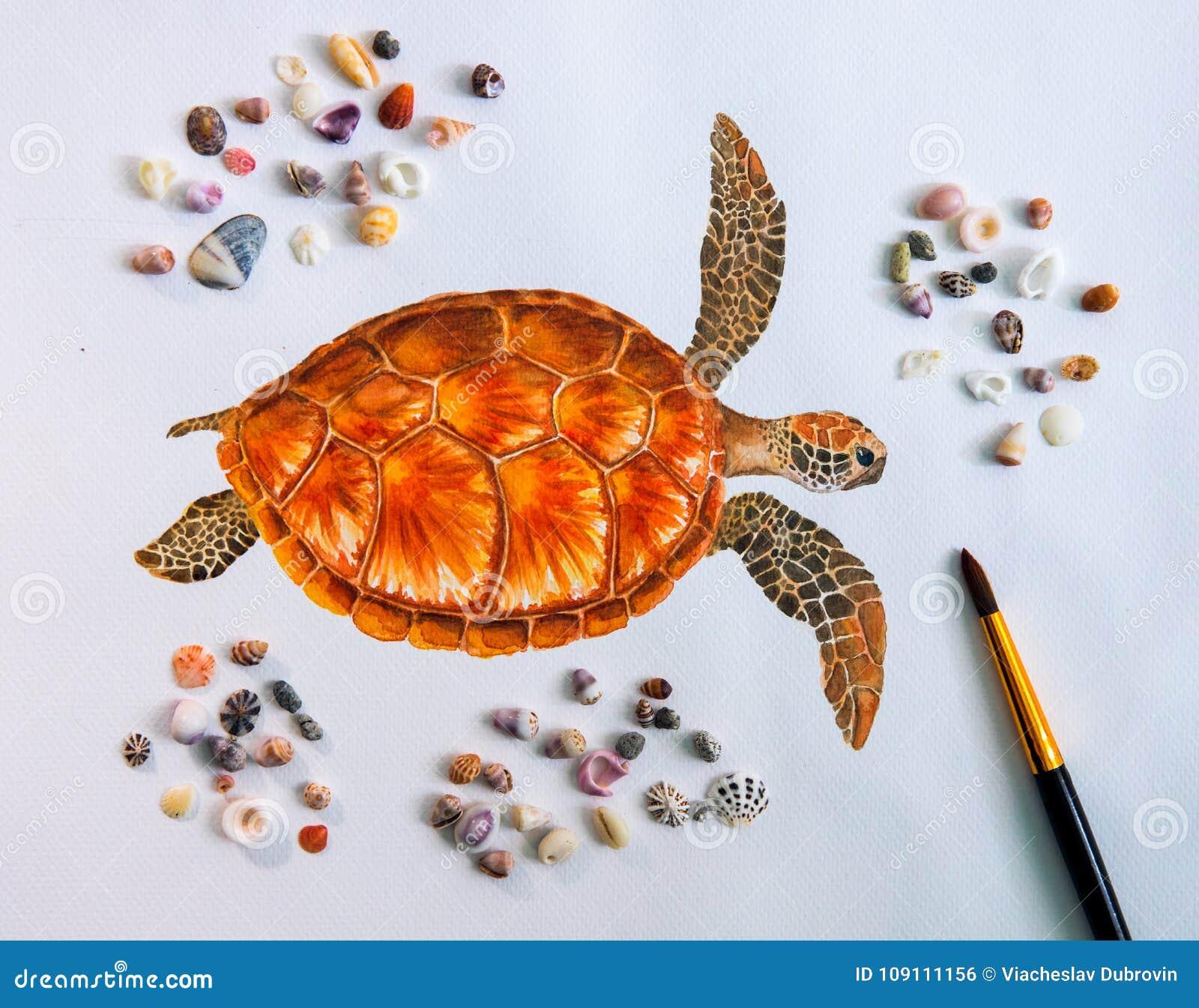 El Dibujo Del Color De Agua De La Tortuga De Mar En El Libro Blanco