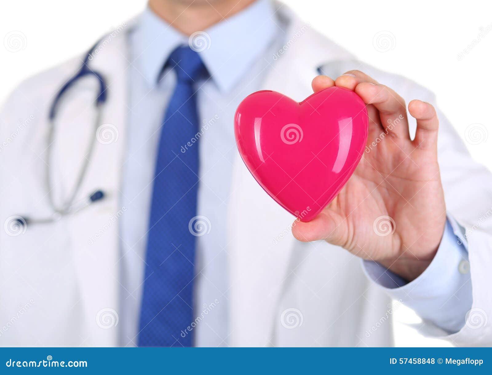 El doctor de sexo masculino de la medicina da llevar a cabo el corazón rojo del juguete