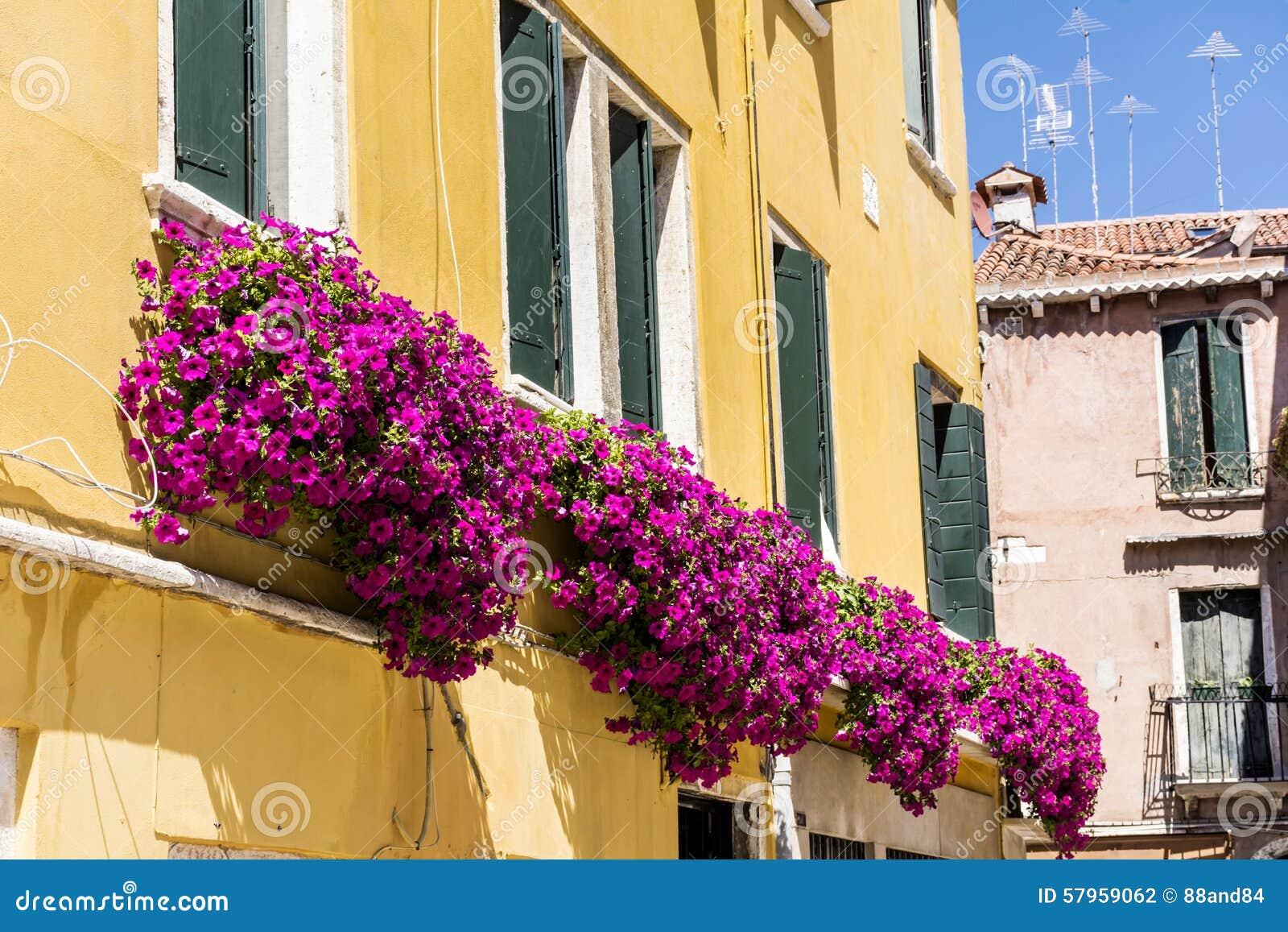 El Edificio Amarillo Antiguo Con La Terraza Con La Petunia