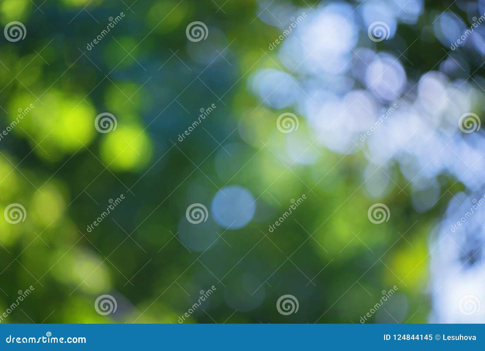 El efecto borroso del bokeh sobre un fondo del árbol verde se va