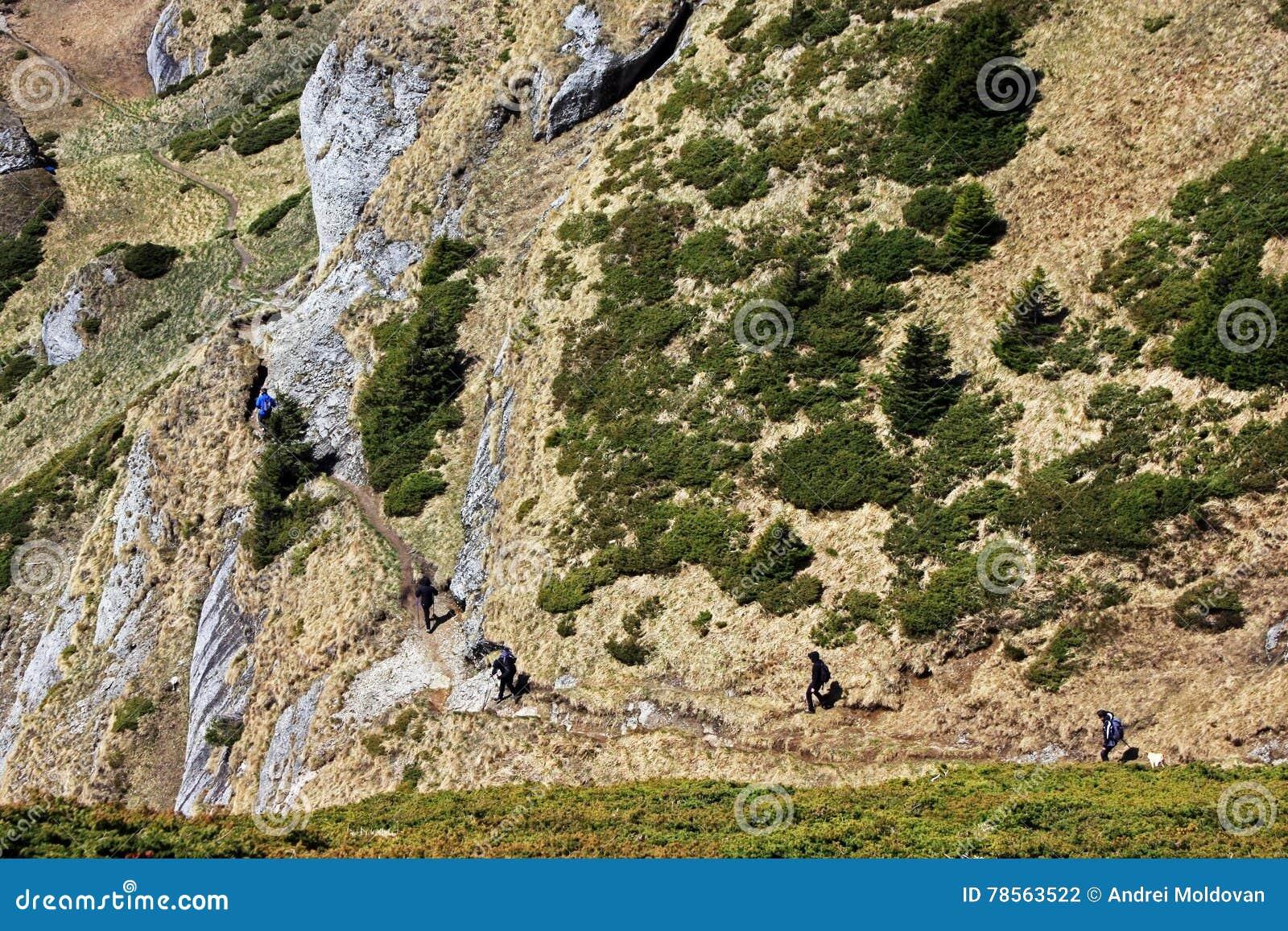 El emigrar en las montañas de Ciucas