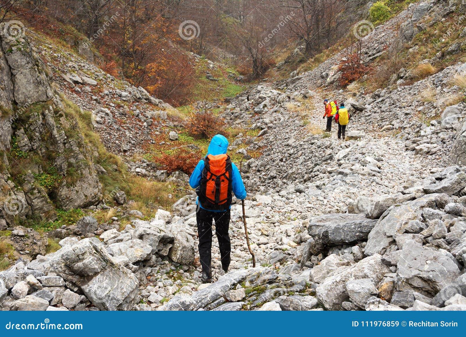 El emigrar en las montañas de Mehedinti en otoño