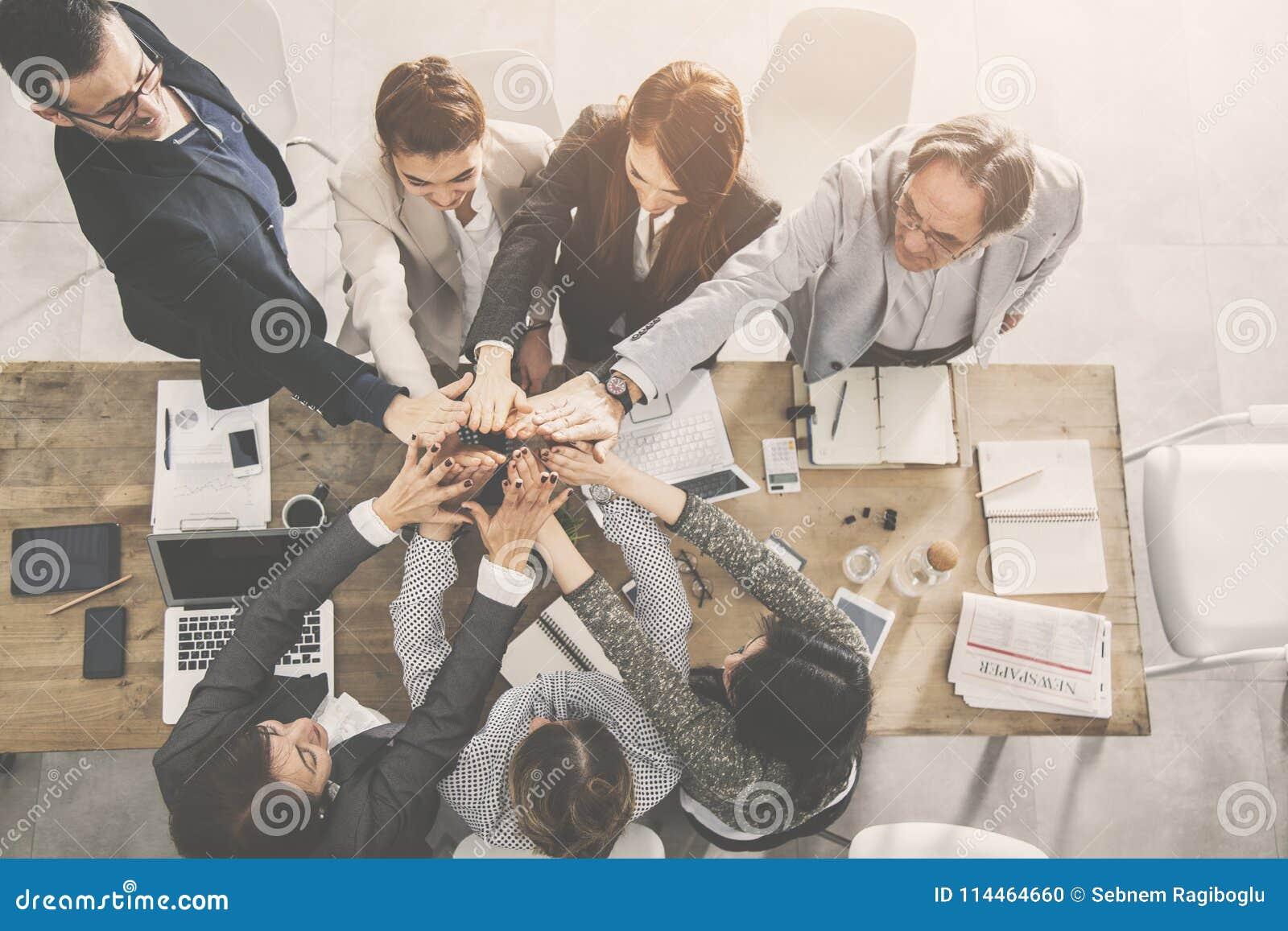El equipo del negocio está dando el alto cinco