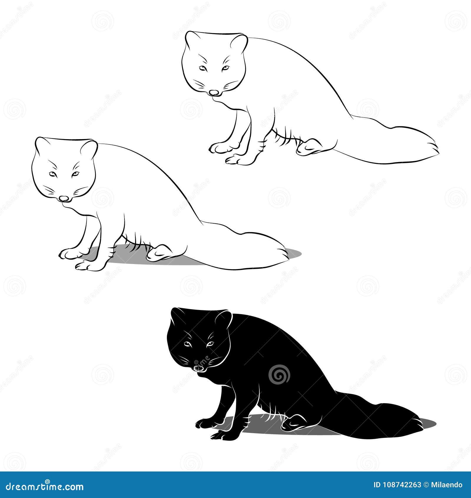 El Esquema Y Silueta Del Fox ártico Ilustración del Vector ...