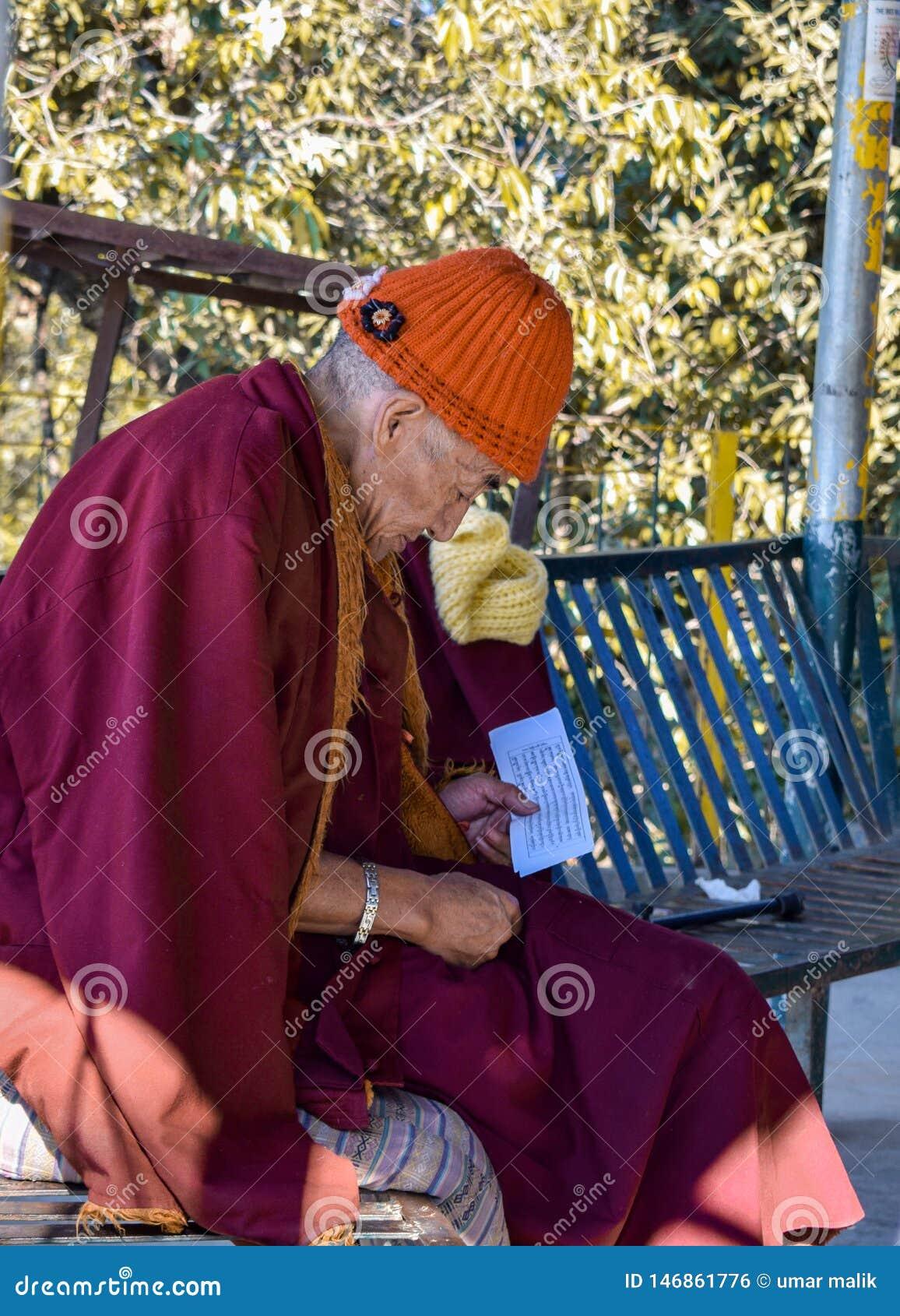El estudiar de Peaceful del monje