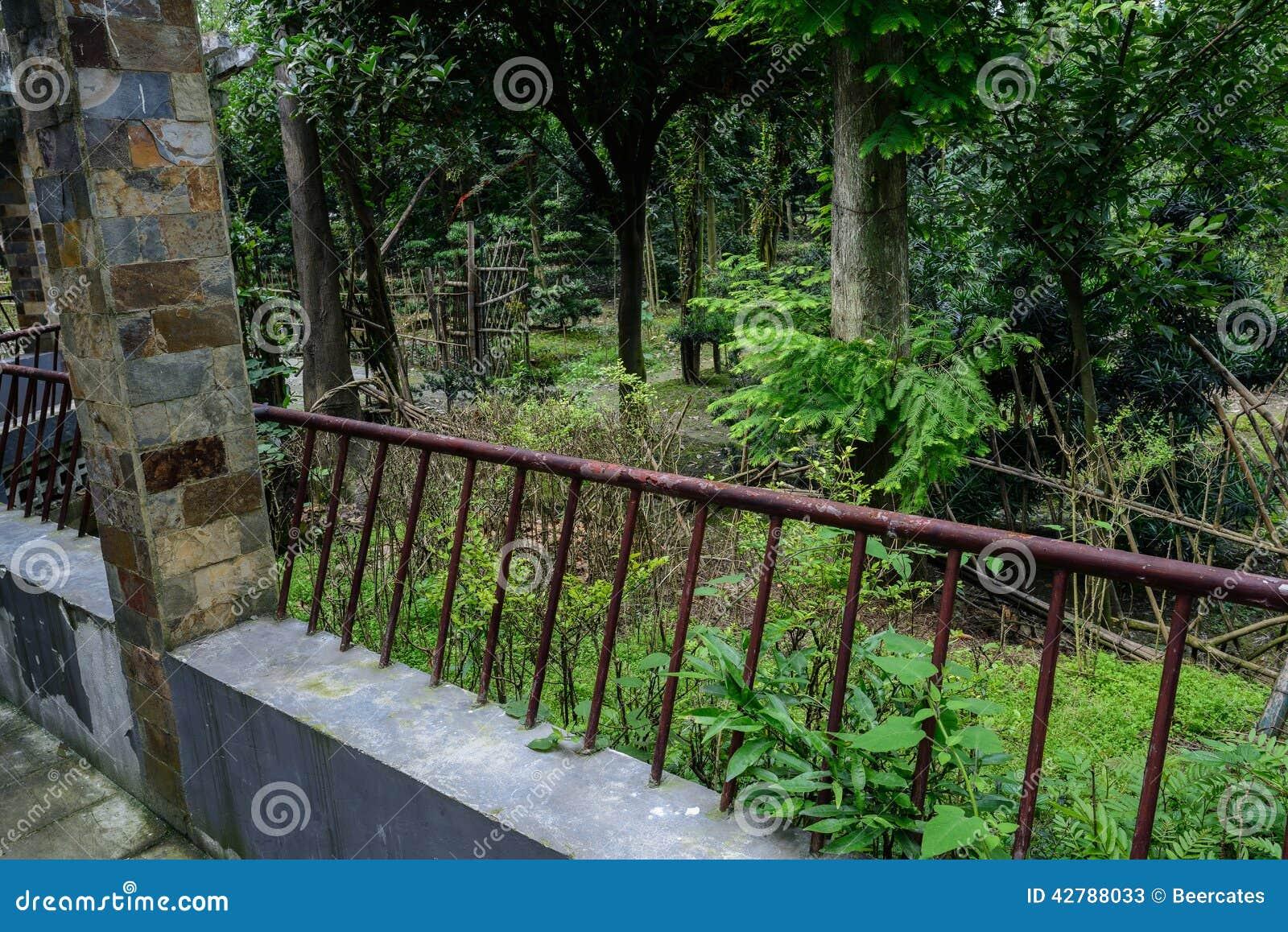 El exterior verde de las plantas dilapid pasillo con - Plantas verdes exterior ...