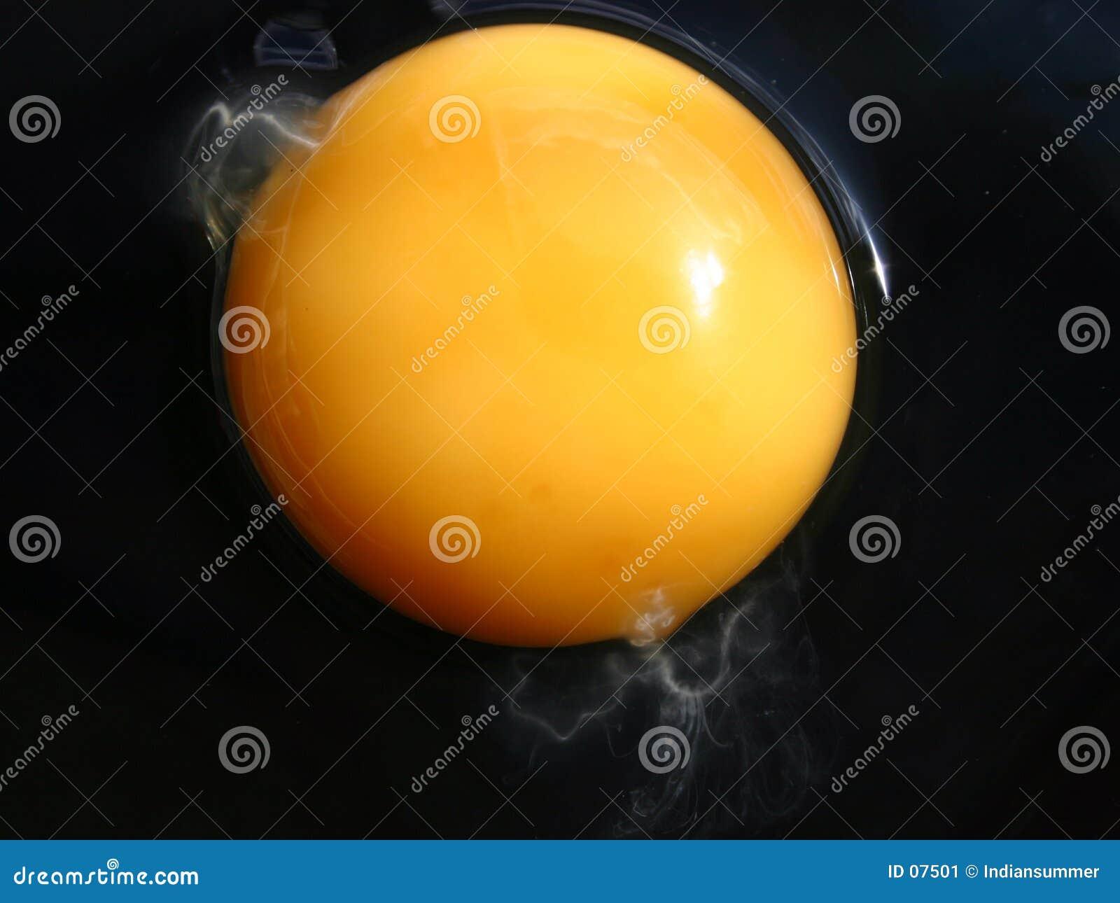 El extremo eggs la serie VIII