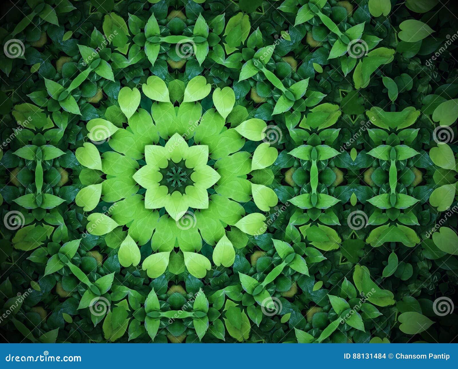 El fondo abstracto del verdor, verde en forma de corazón se va con kal