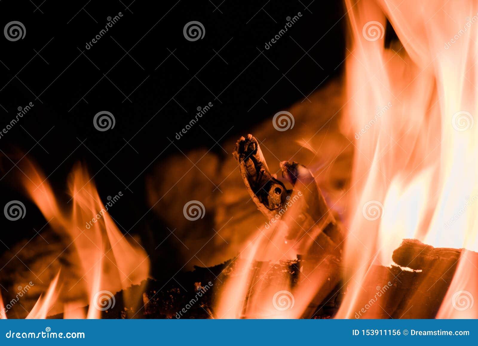El fuego que acampa caliente cuece