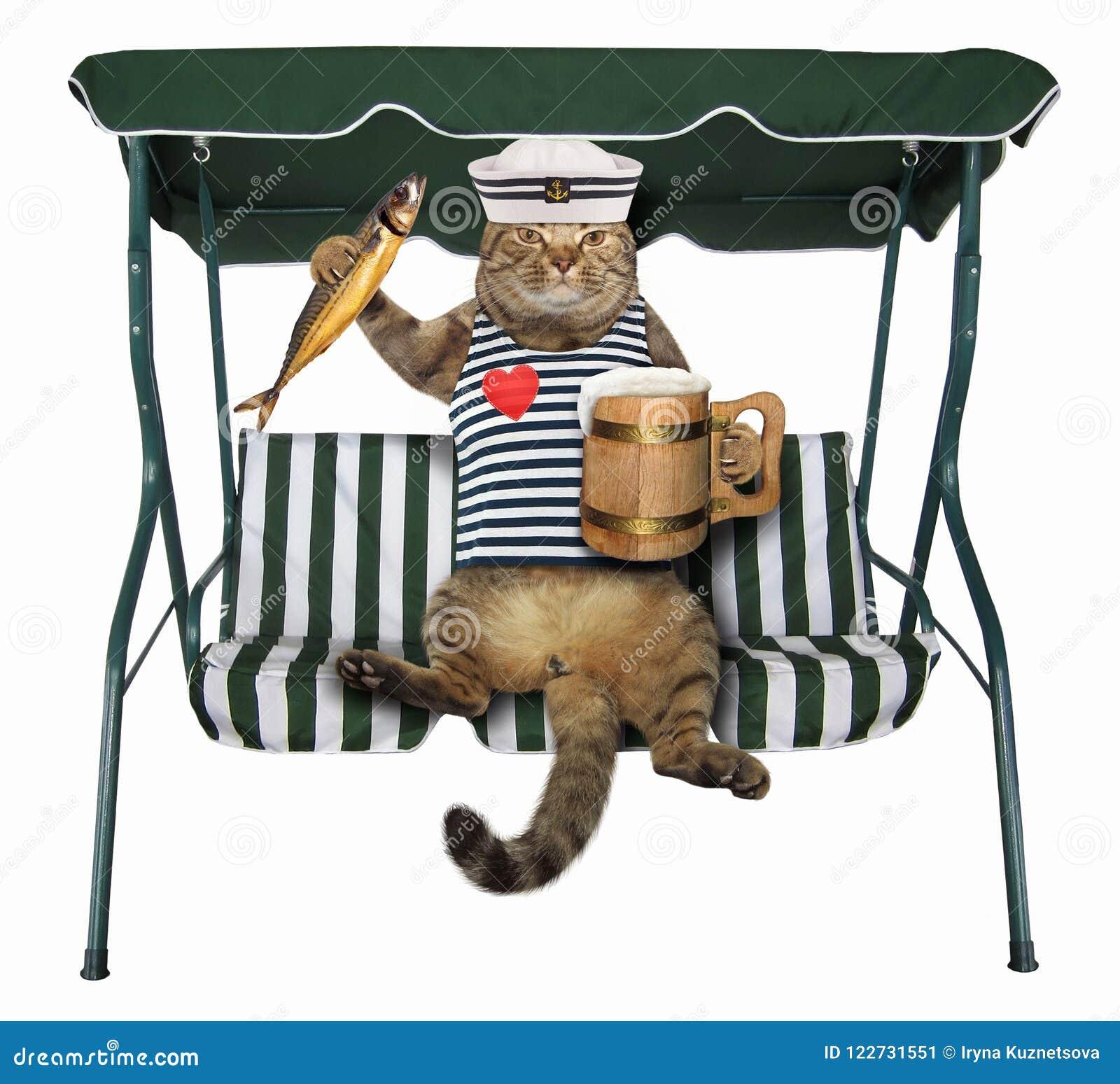 El gato con la cerveza está en un banco del oscilación
