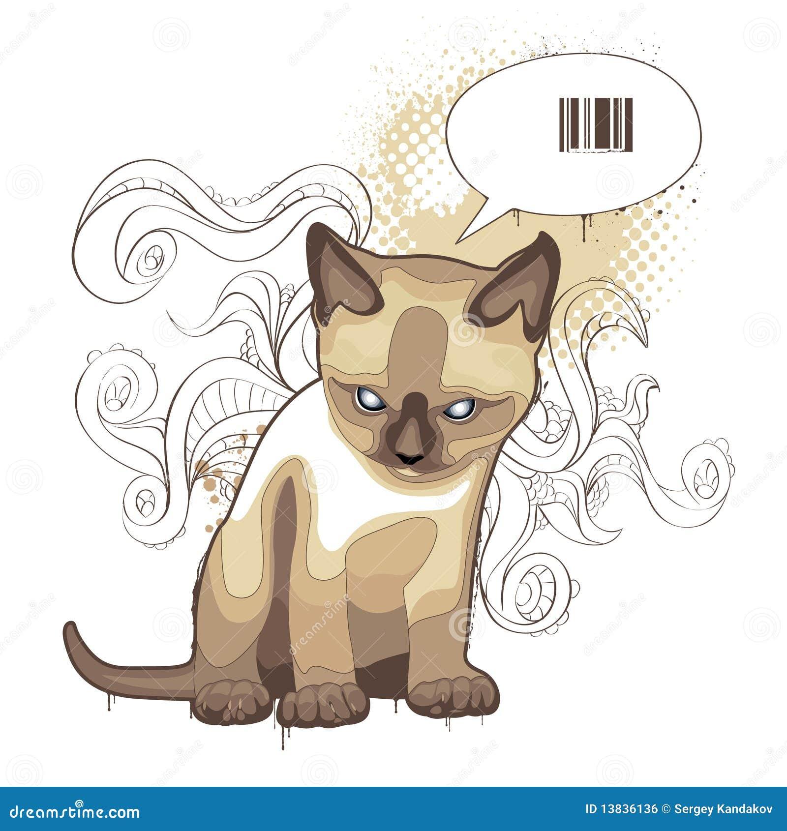 El gato en fondo extraño