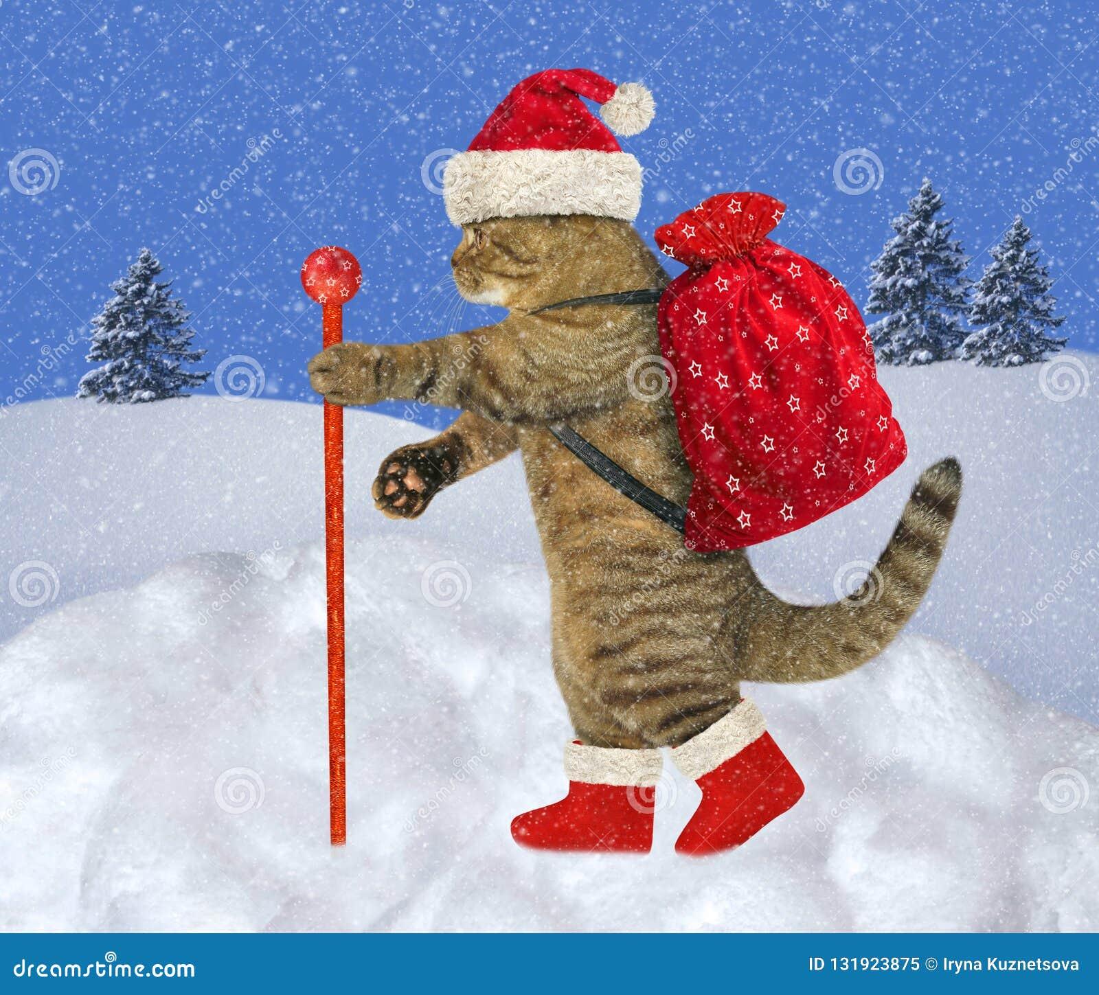 El gato lleva los regalos 2 de la Navidad