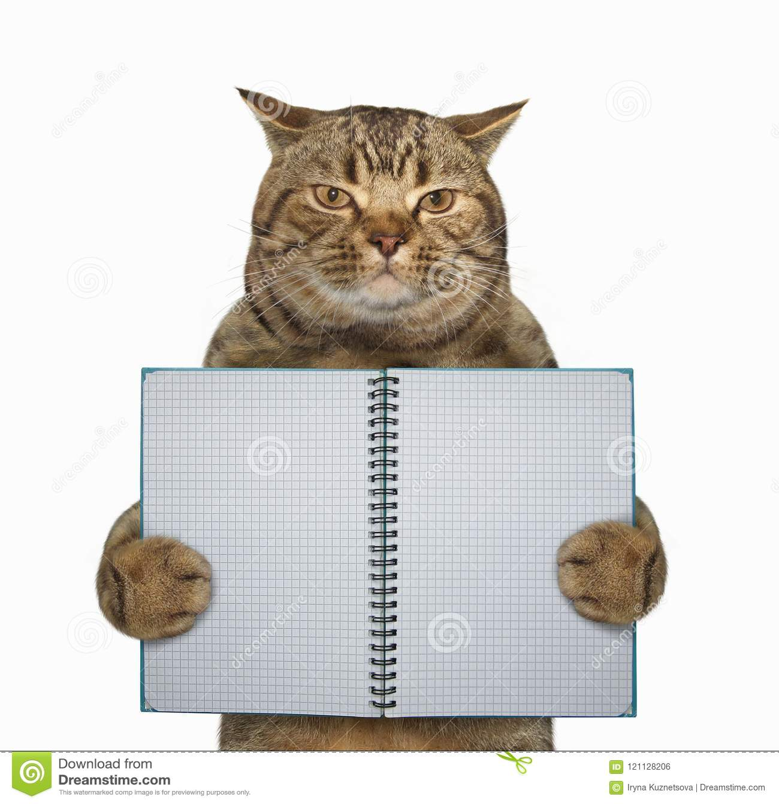 El gato sostiene un cuaderno revelado