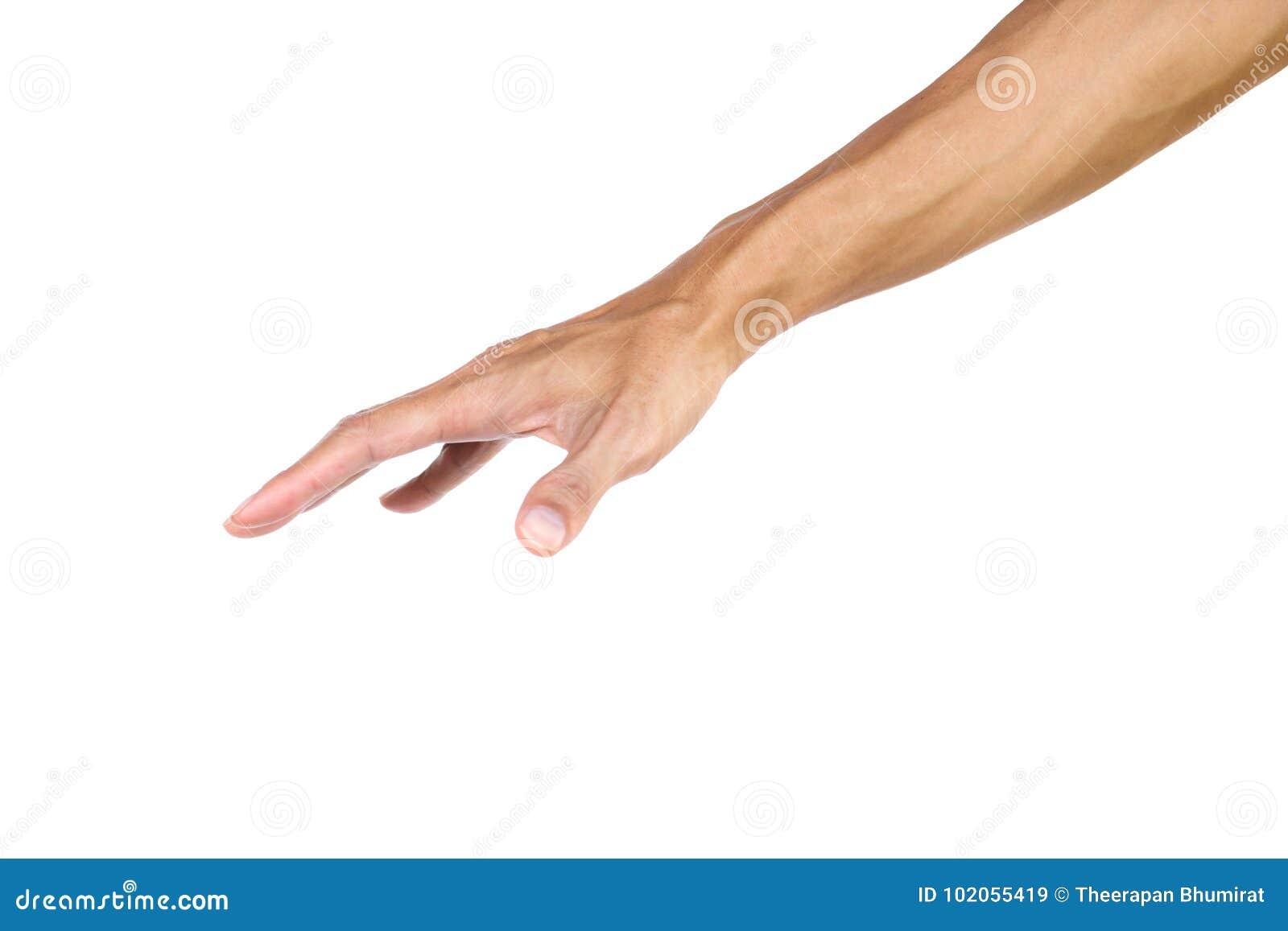 El gesto de mano como una palma aprieta aislado en el fondo blanco con la trayectoria de recortes