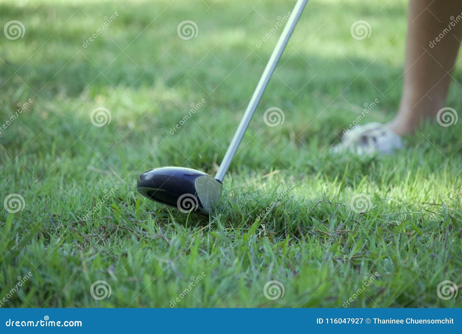 El golfista de la señora está jugando a golf