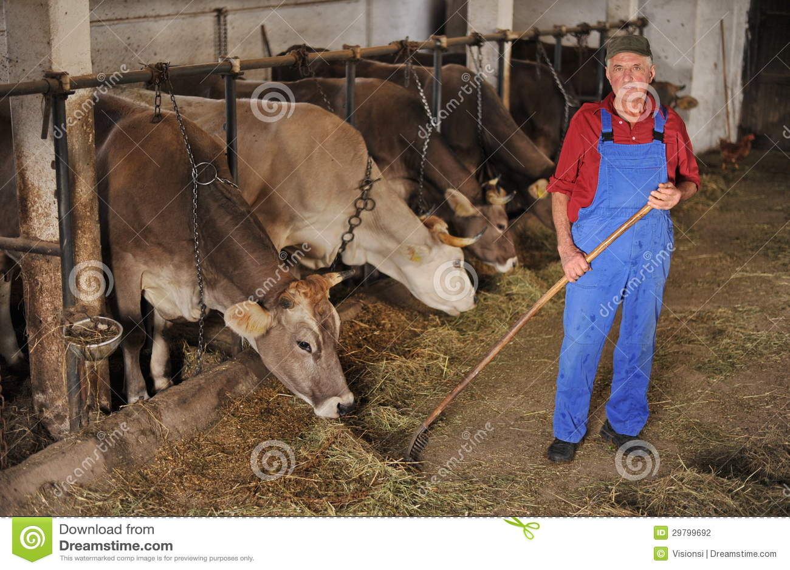 Trabajando en una granja de sexo