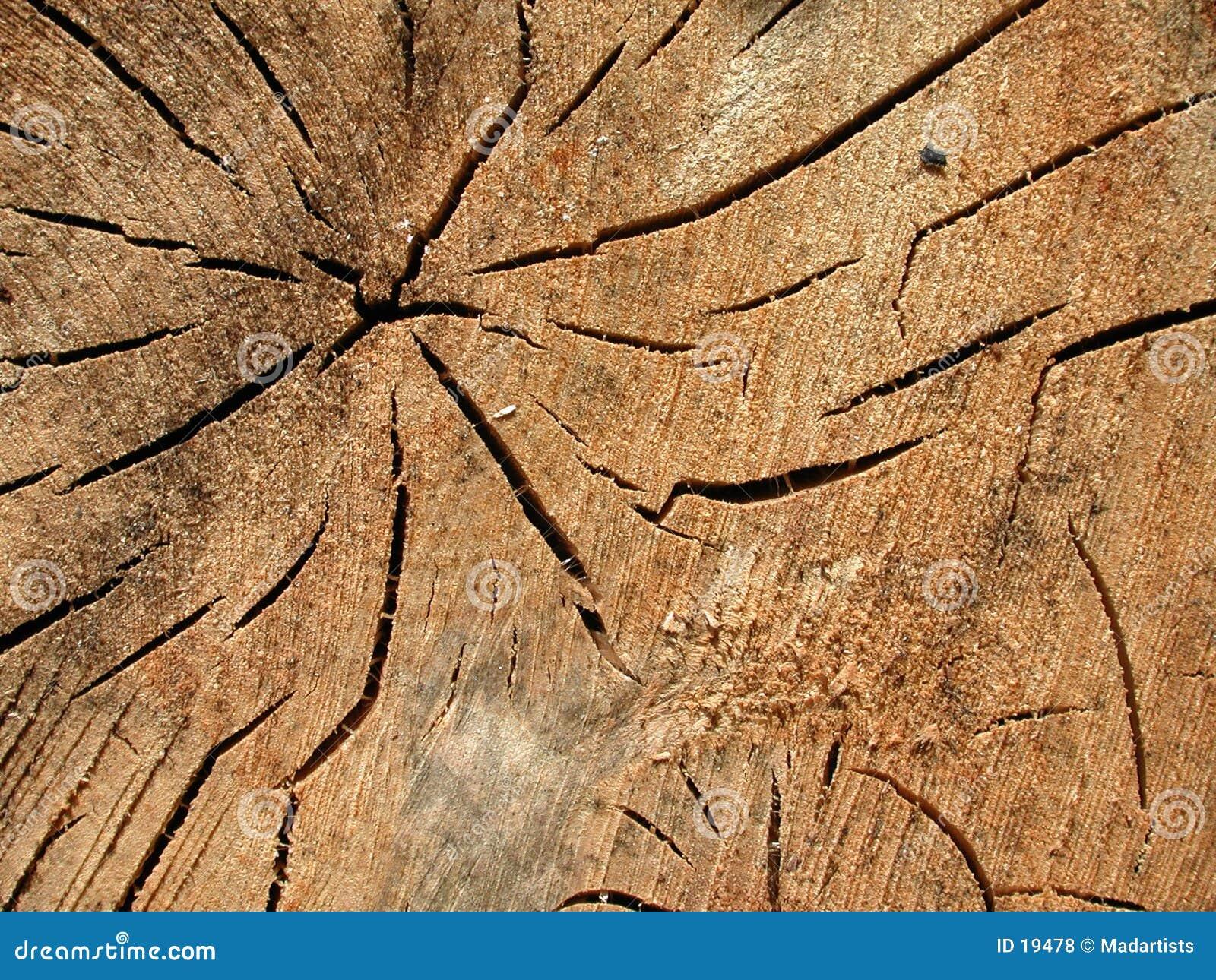 El grano de madera viejo quiebra textura