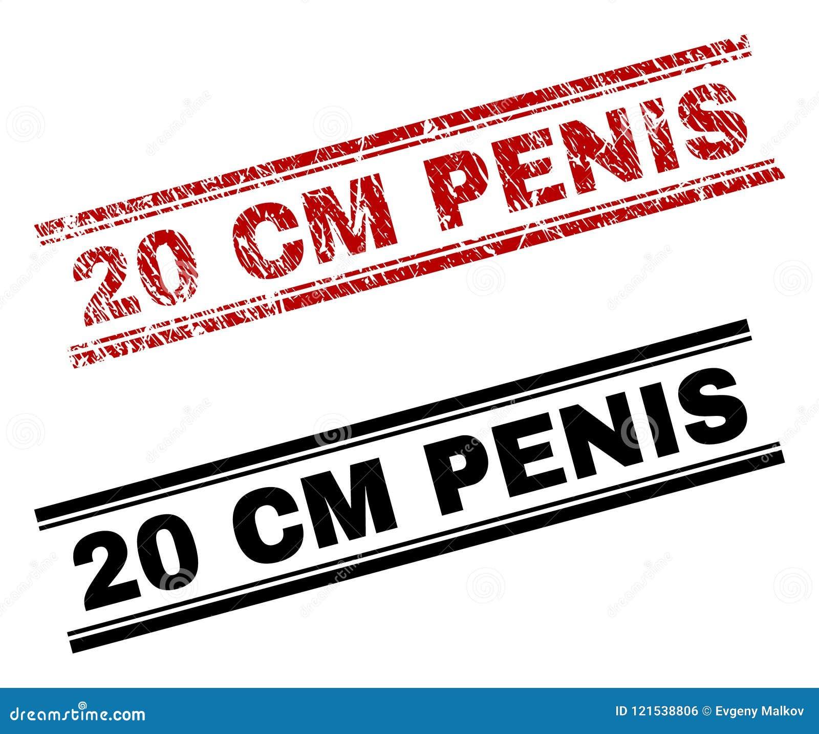 pene de 20 cm