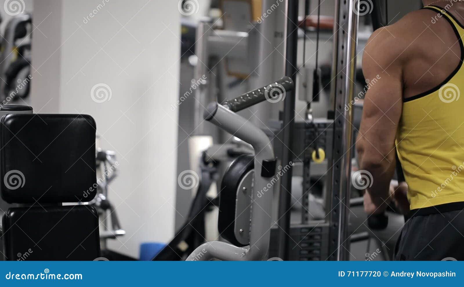 Circuito Gym : Circuito de spa spaminos