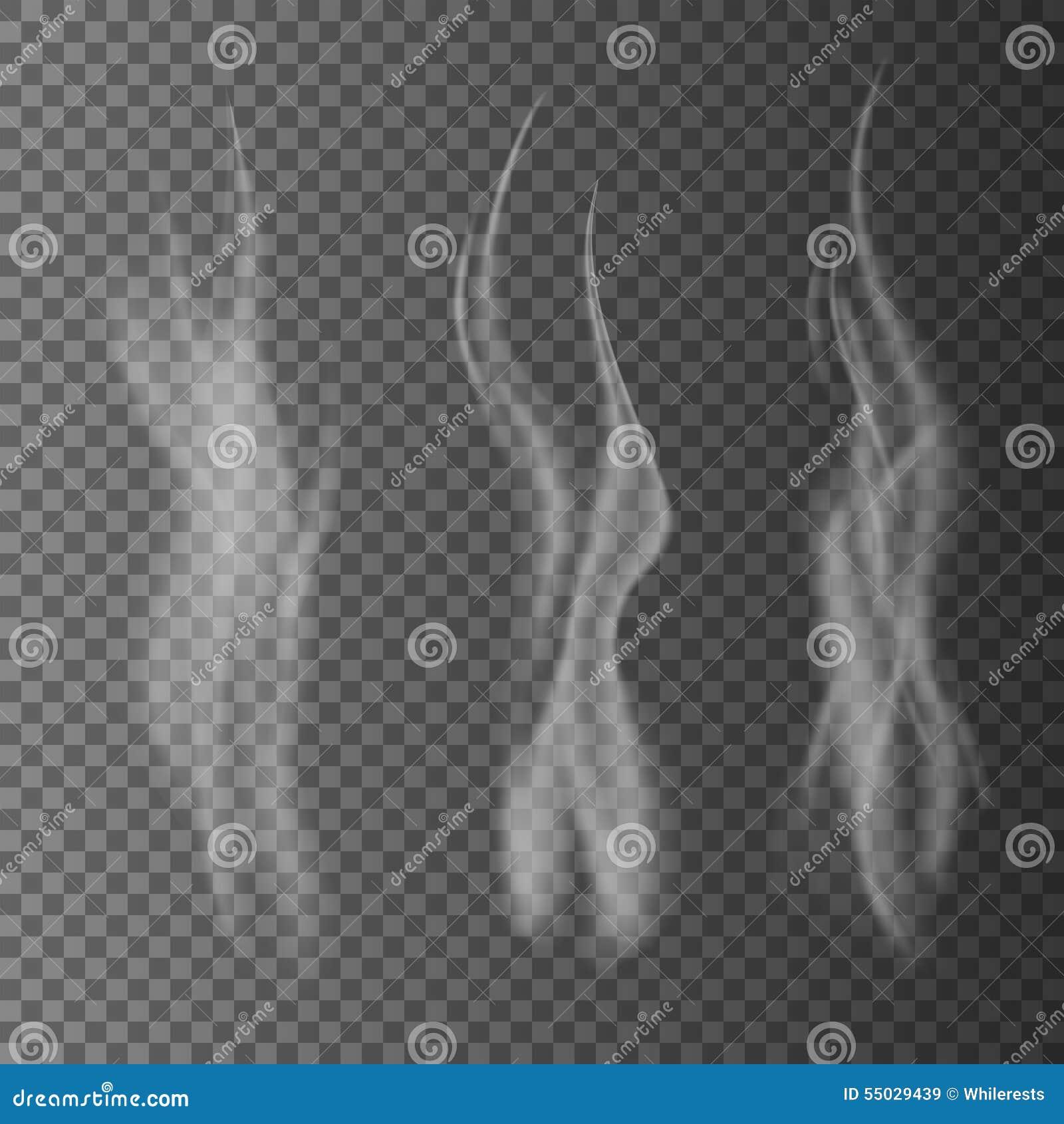 El humo blanco delicado del cigarrillo agita en el ejemplo transparente del vector del fondo