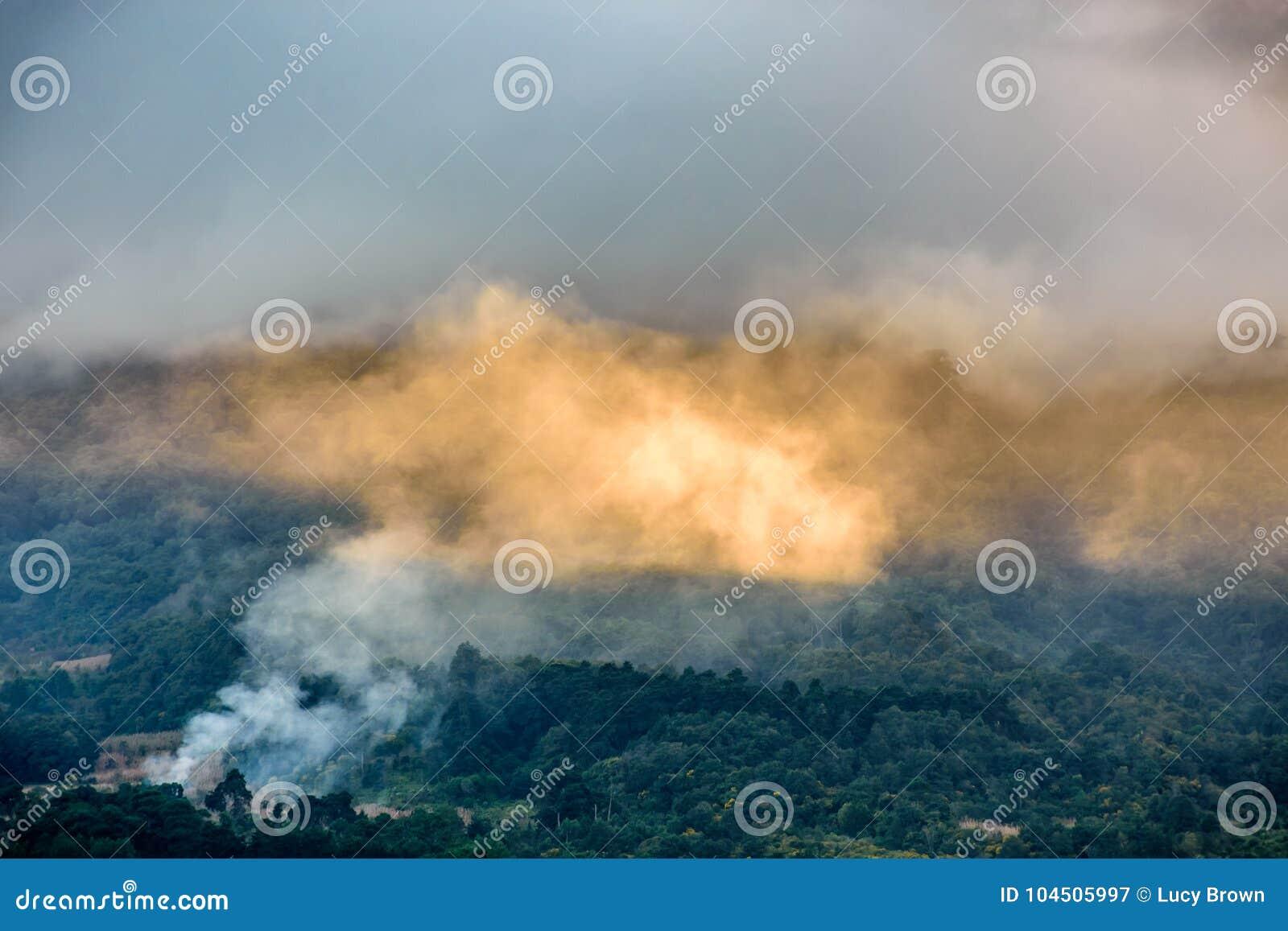 El humo y las nubes se encendieron por luz del sol de oro en cuesta boscosa