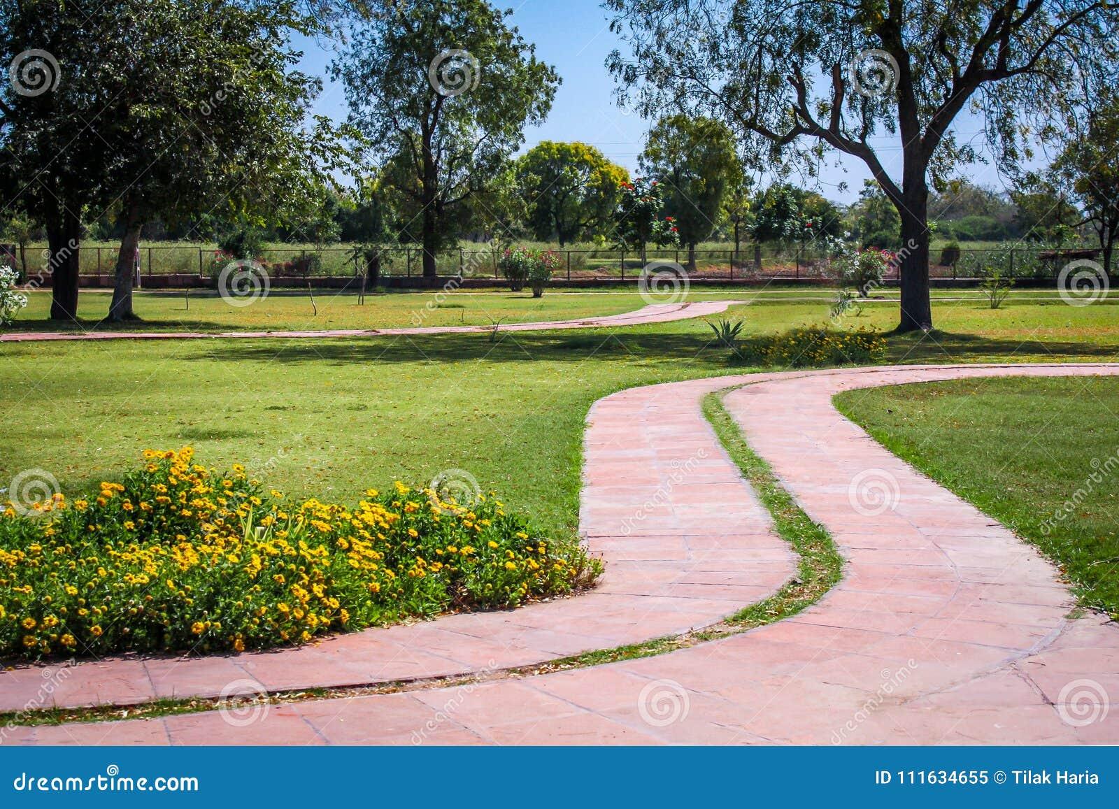 El jardín/el parque