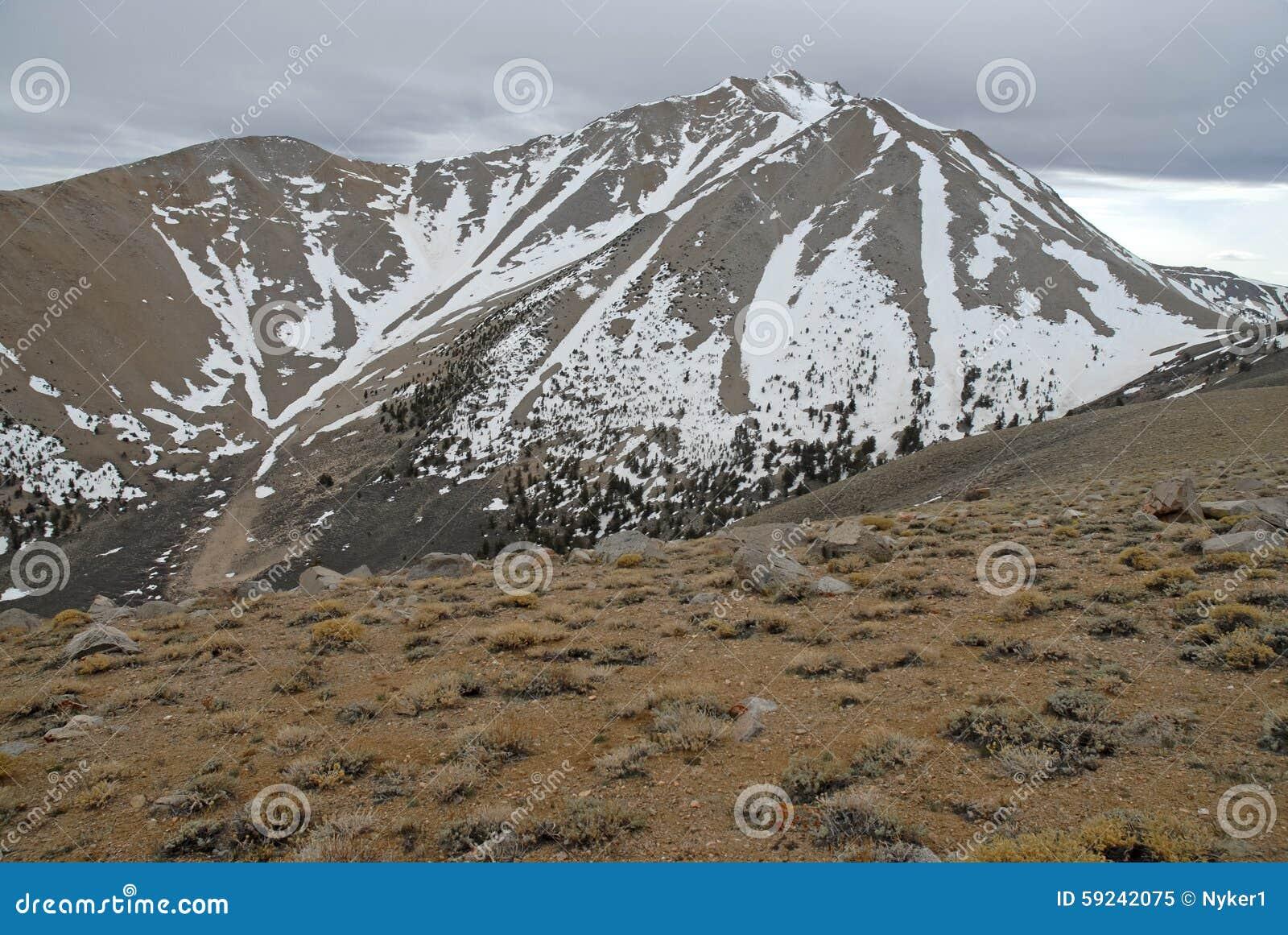 Download El Límite Inminente Enarbola En Las Montañas, El Nevada 13er Y El Punto álgido Blancos Del Estado Imagen de archivo - Imagen de naturalizado, muir: 59242075