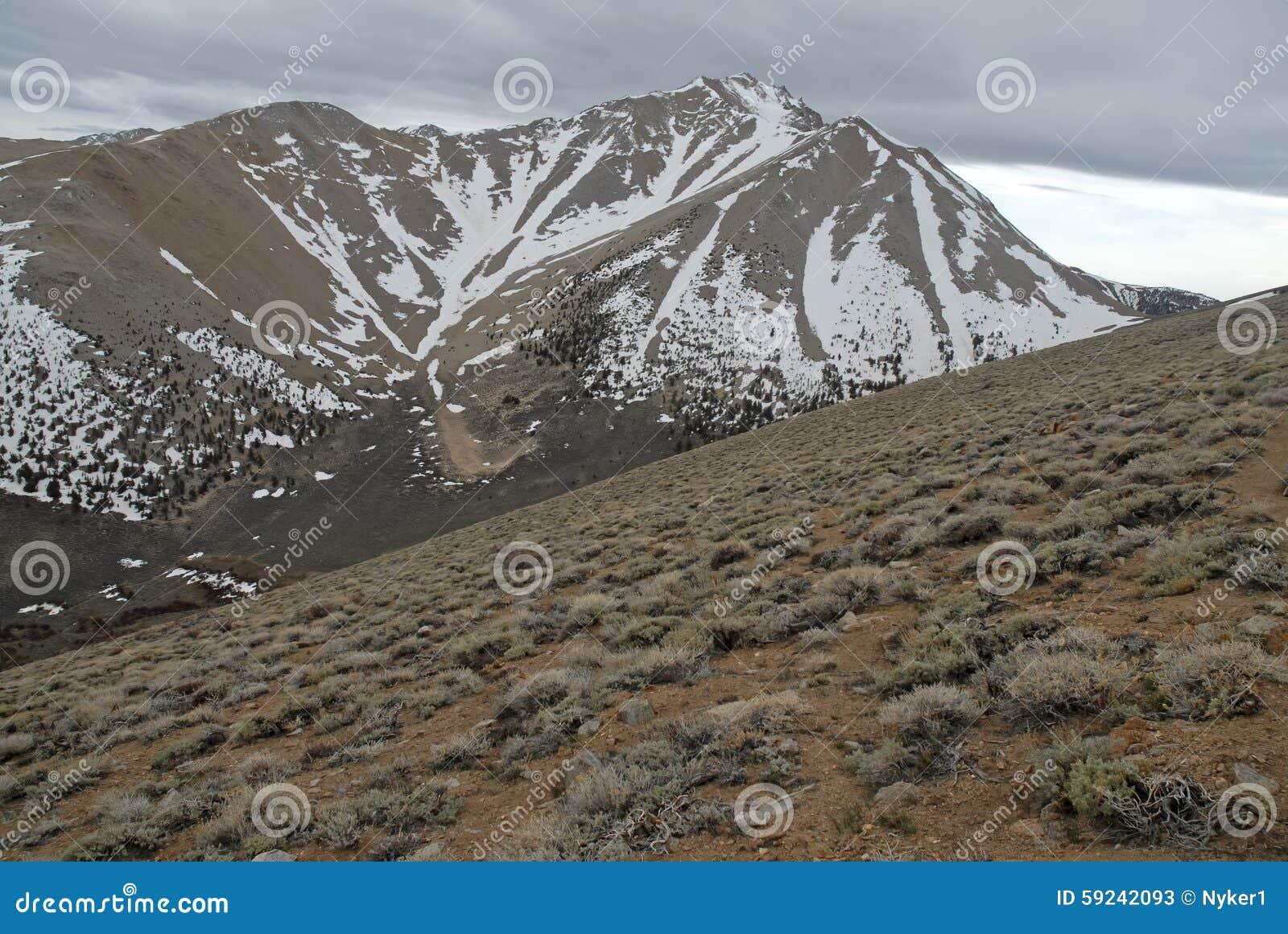 Download El Límite Inminente Enarbola En Las Montañas, El Nevada 13er Y El Punto álgido Blancos Del Estado Imagen de archivo - Imagen de climbing, pico: 59242093