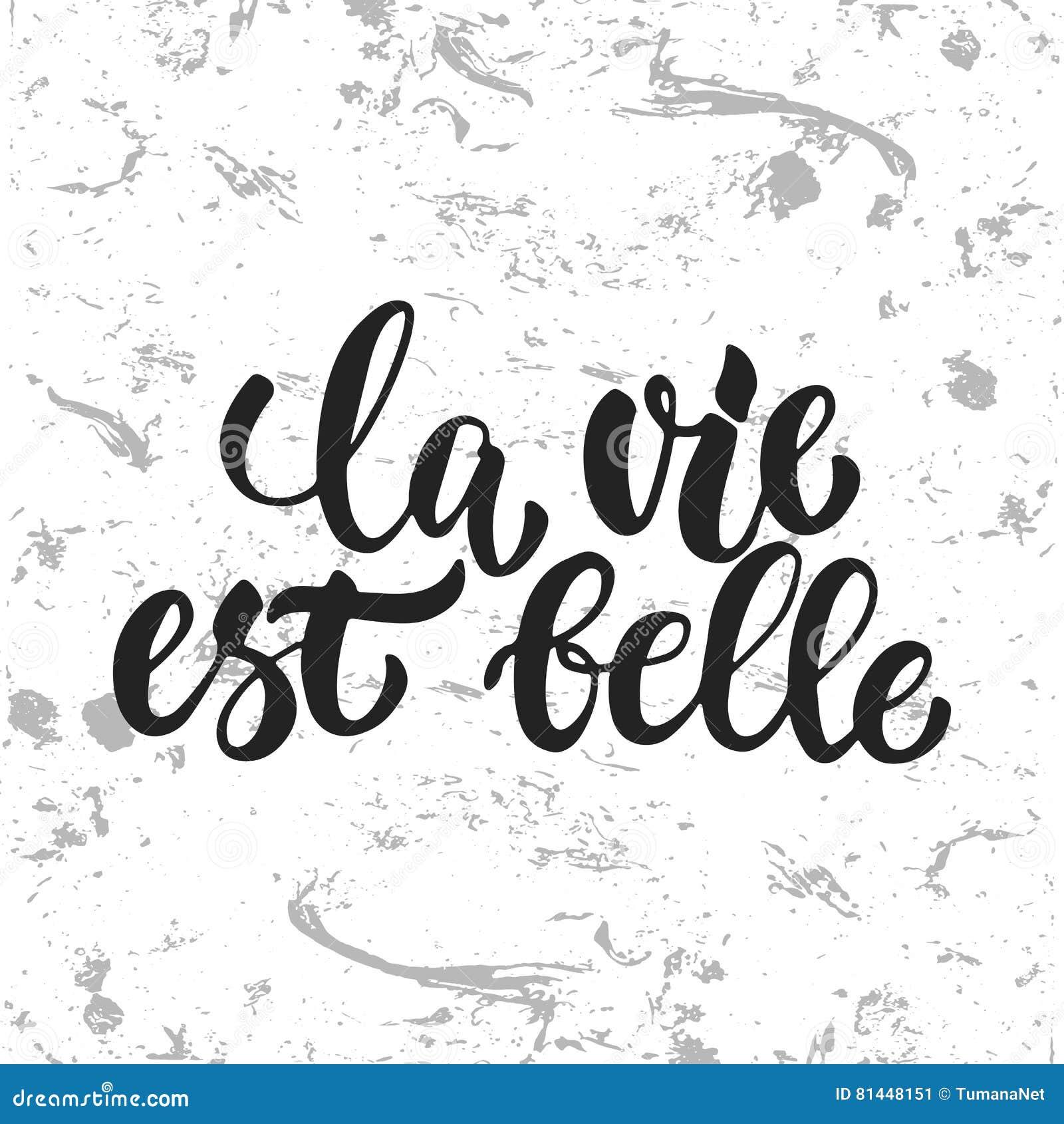 El La Compite A La Belleza Del Est Dé La Frase Francesa