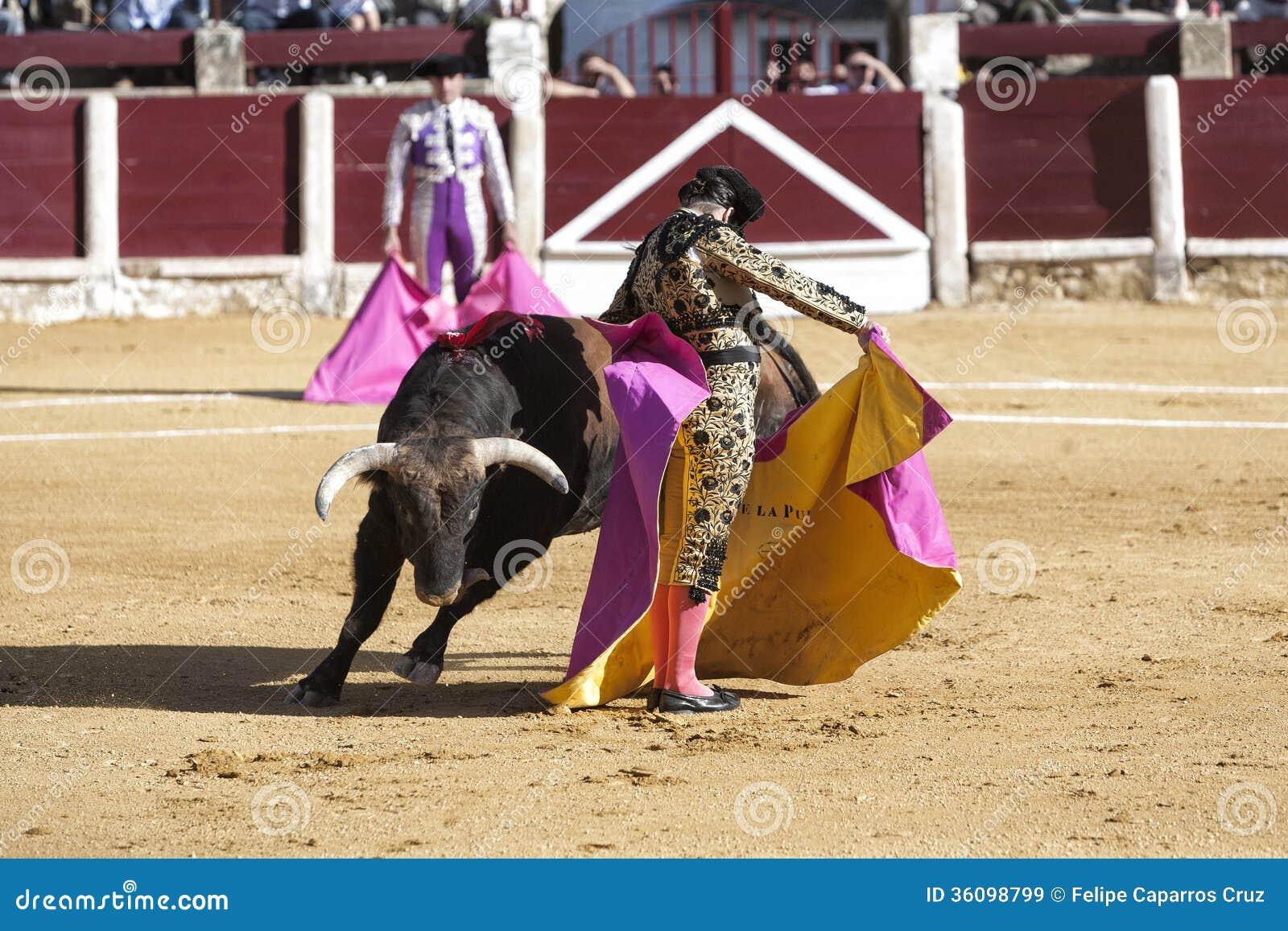 El la español Puebla de Morante del torero con la tauromaquia del capote o del cabo llamó chicuelina un toro de casi 600 kilogramo
