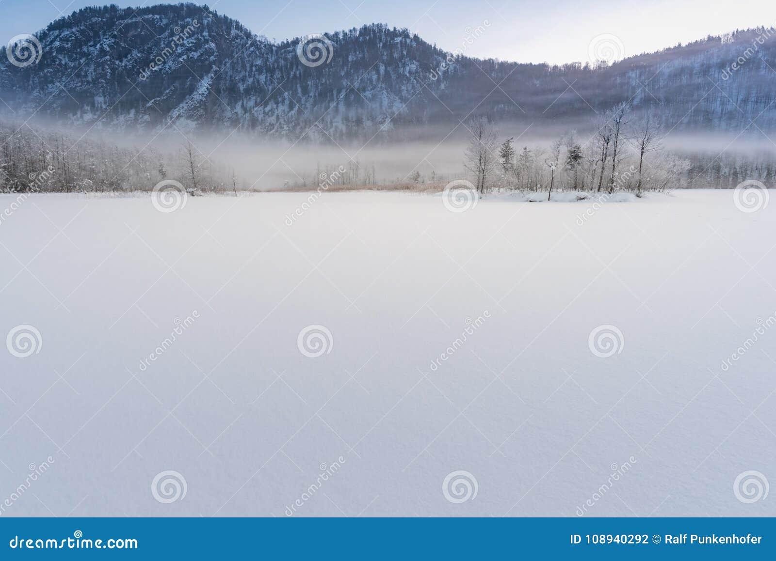 El lago congelado Almsee en Austria septentrional con algunos árboles congelados una niebla
