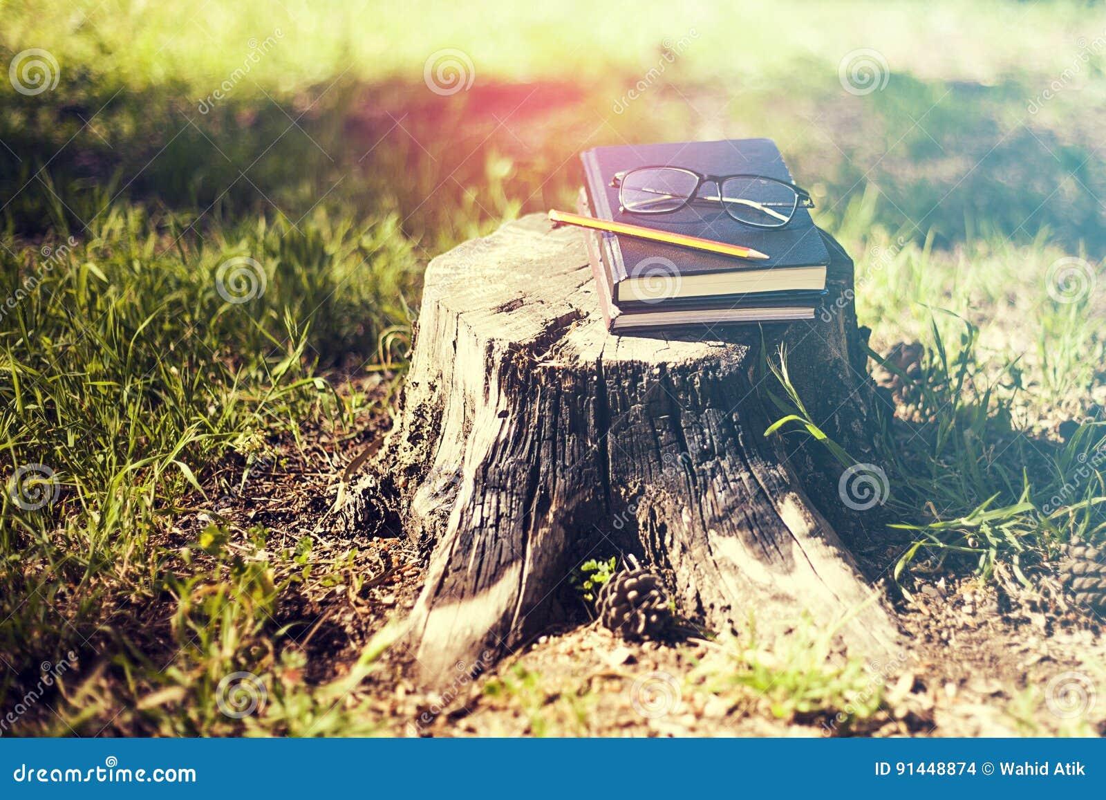 El libro cerrado sobre él es un lápiz, vidrios en un disparador un árbol adentro