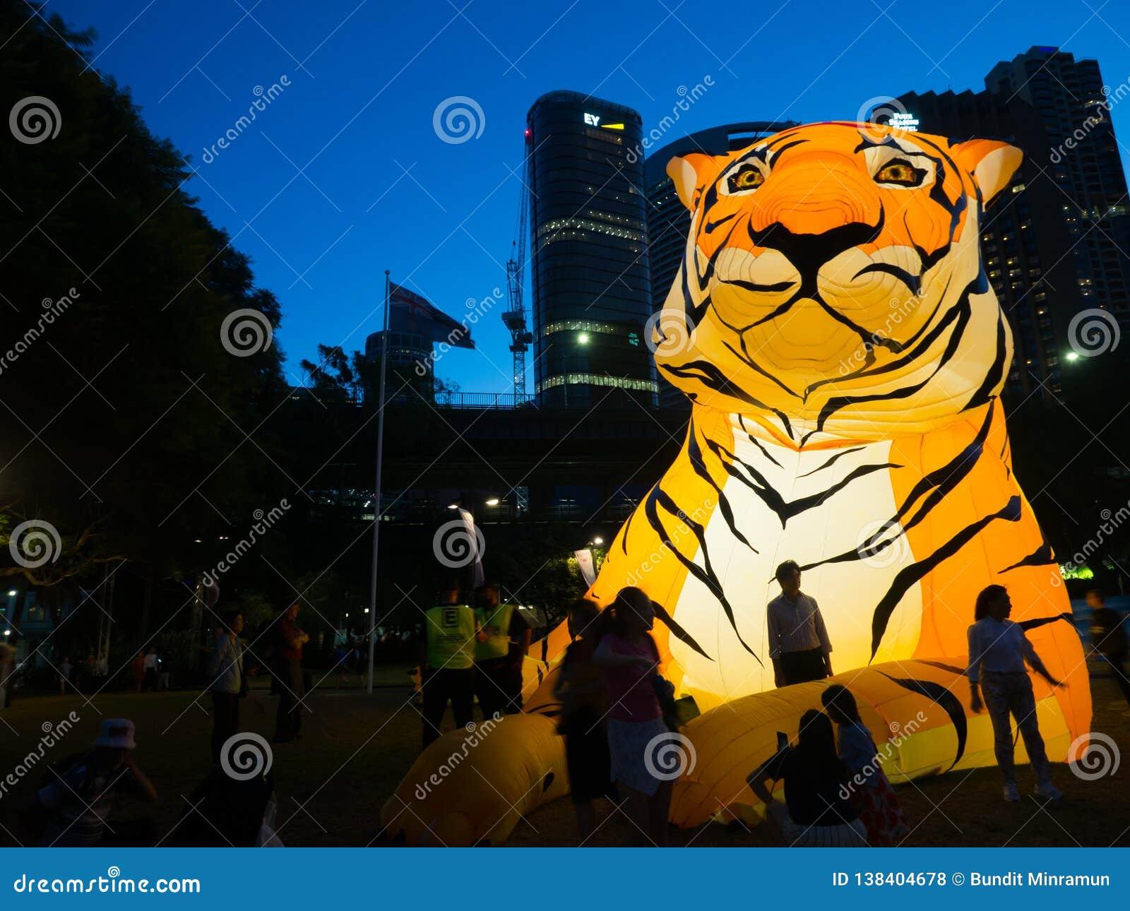 El ` lunar de la linterna que el ` del tigre es símbolo del zodiaco del tigre será iluminado de oscuridad en Quay circular por el