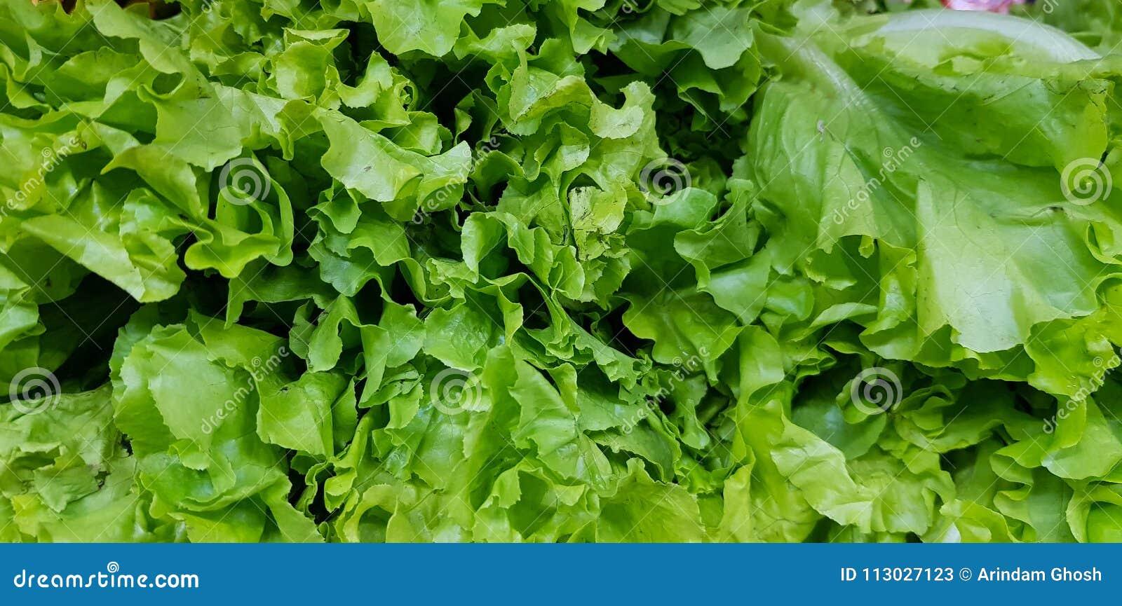 El manojo fresco de lechuga se va en el mercado vegetal para la venta