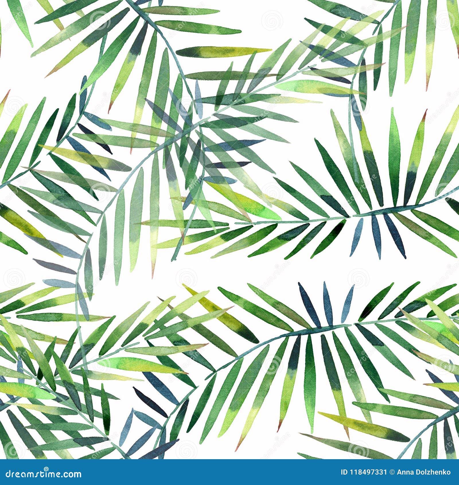 El modelo floral maravilloso tropical herbario verde hermoso brillante del verano de Hawaii de una palma y de un monstera tropica