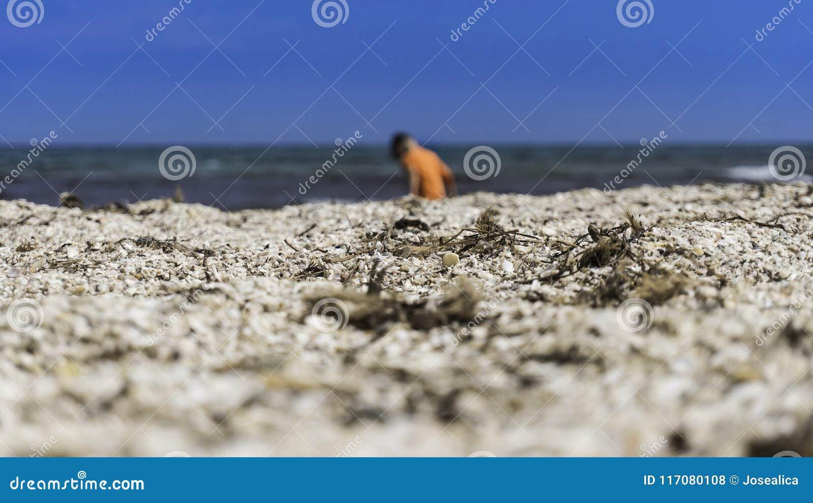 El niño en la playa