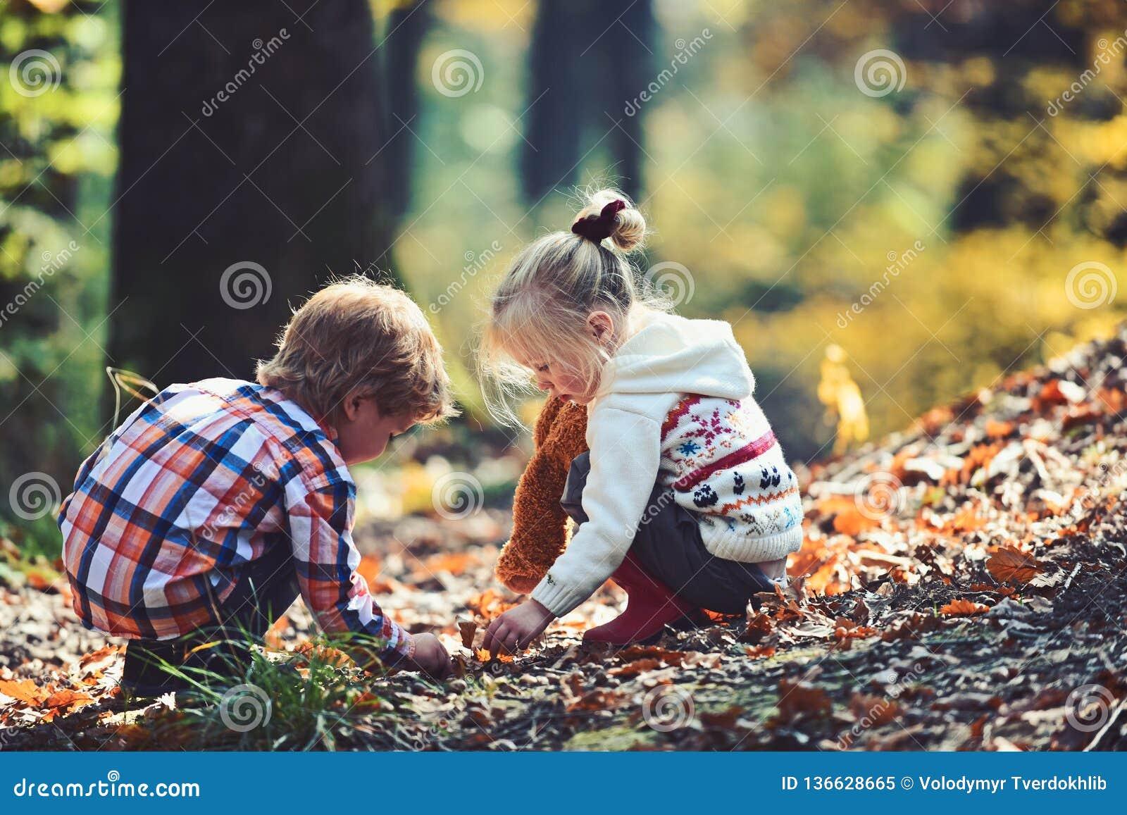 El niño pequeño y las amigas se divierten en el aire fresco Los niños escogen las bellotas de los robles Brother y hermana que ac